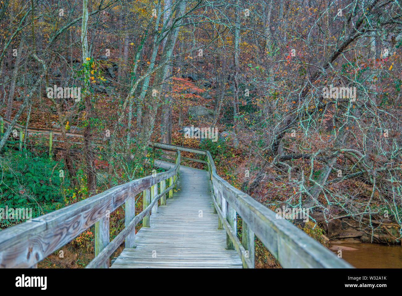 Boardwalk trail crossing over the river into the colorful forest at autumn - Stock Image