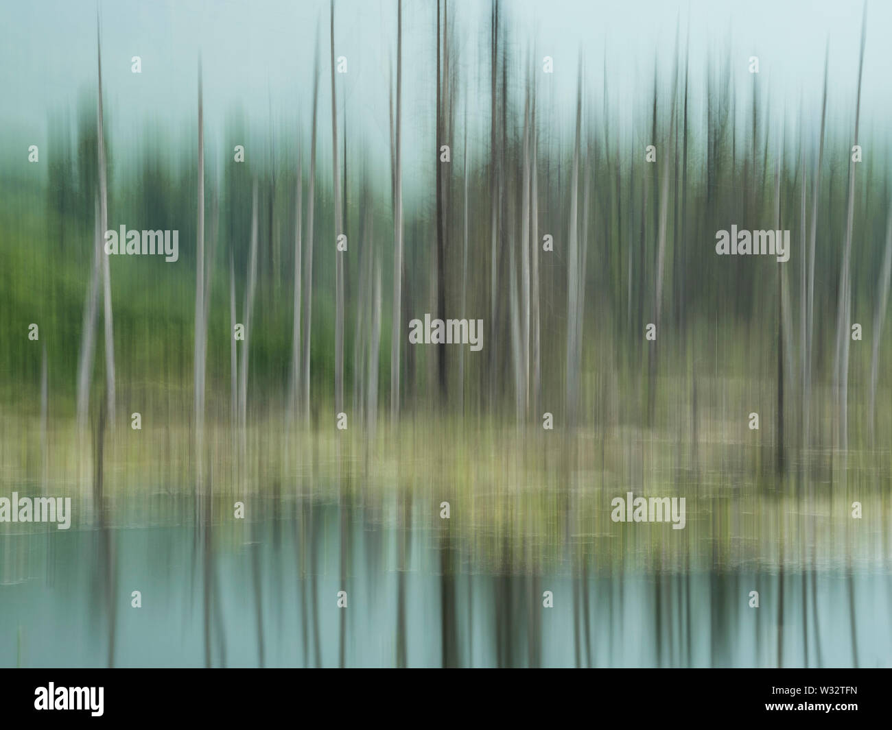 In-camera motion blur of forest and pond near Valdez in Southcentral Alaska. - Stock Image