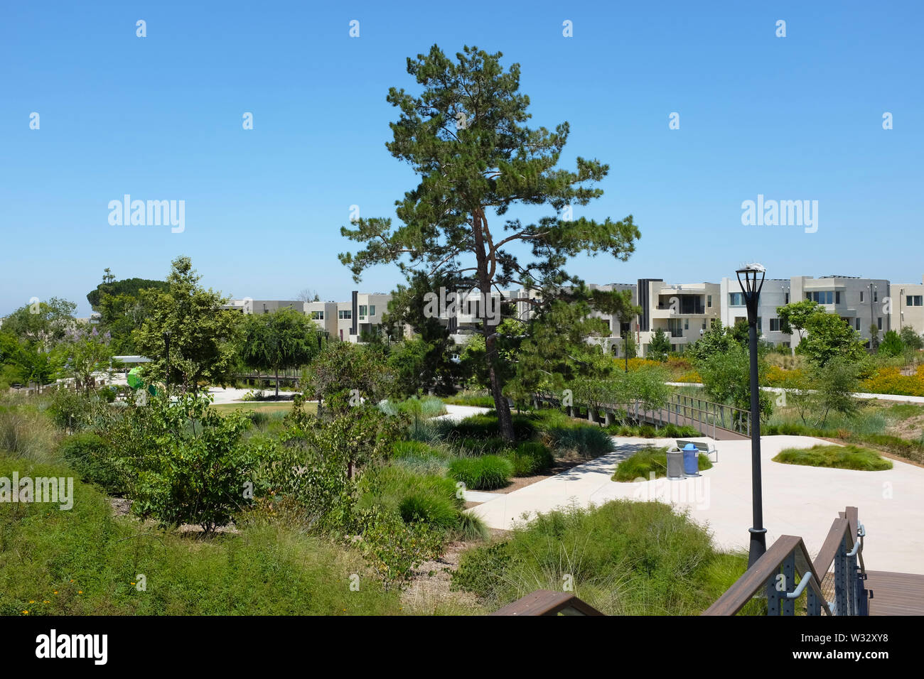 IRIVNE, CALIFORNIA - JULY 11, 2019: New homes border the Great Park Bosque, an open space area with bike and pedestrian trails with native landscaping - Stock Image