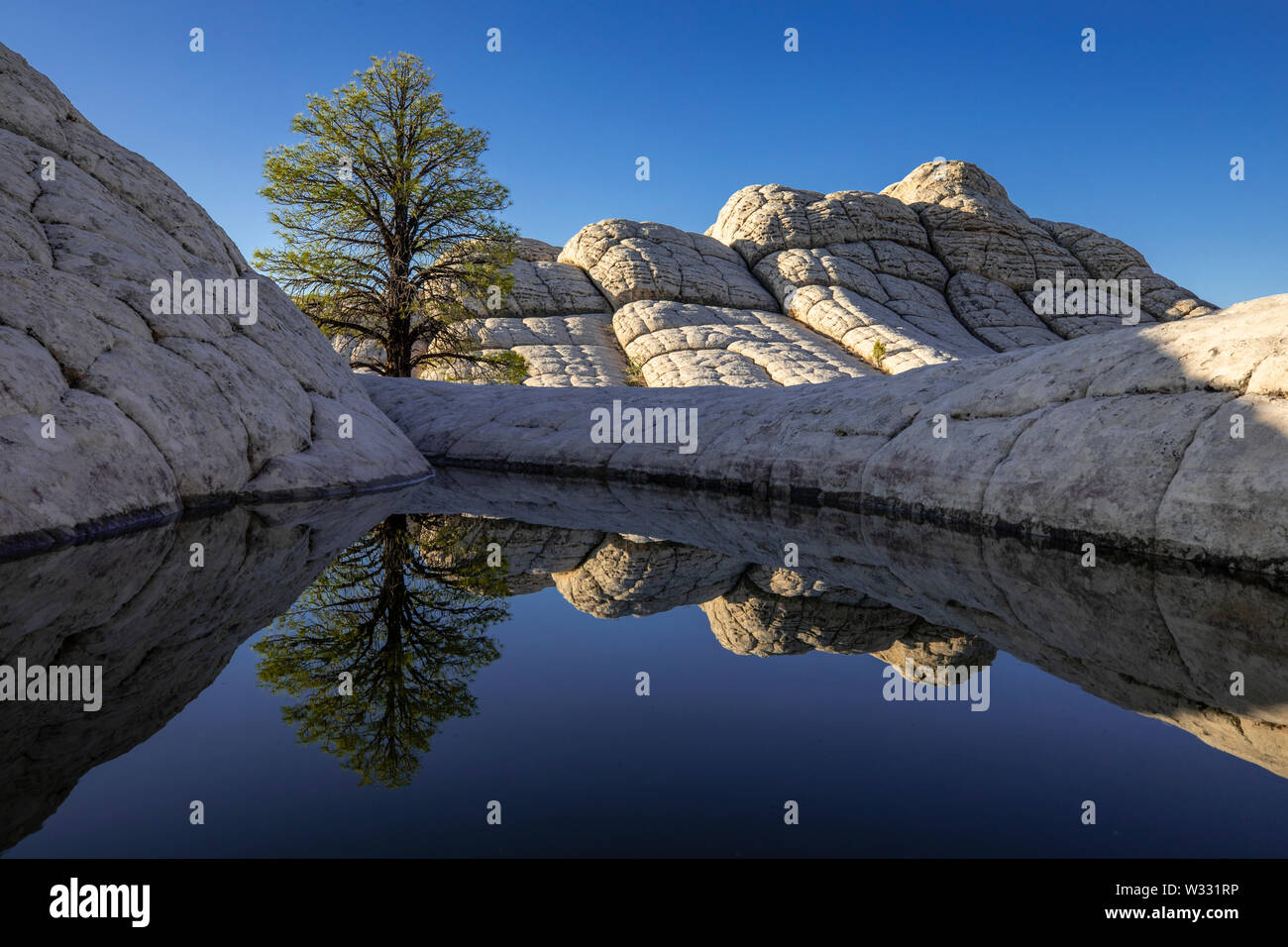 White Pocket in Vermillion Cliffs National Monument, Arizona, United States of America Stock Photo