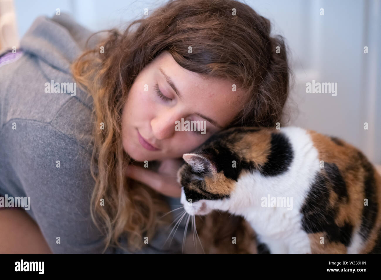 Closeup portrait of young woman bonding with calico cat pet companion, bumping rubbing bunting heads, friends showing affection - Stock Image