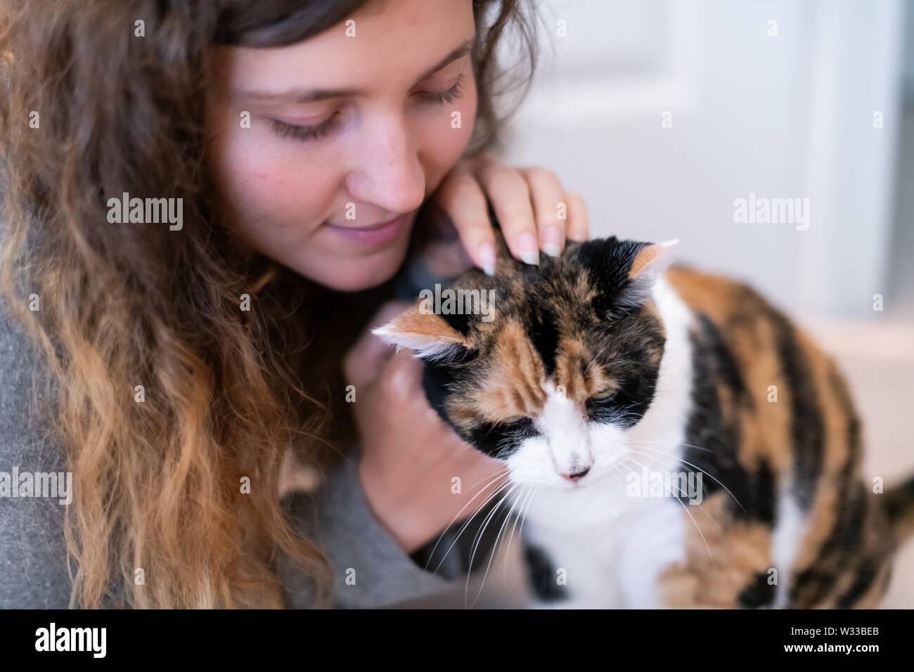 Closeup portrait of happy smiling young woman bonding with calico cat pet, petting and touching scratching head, showing affection - Stock Image
