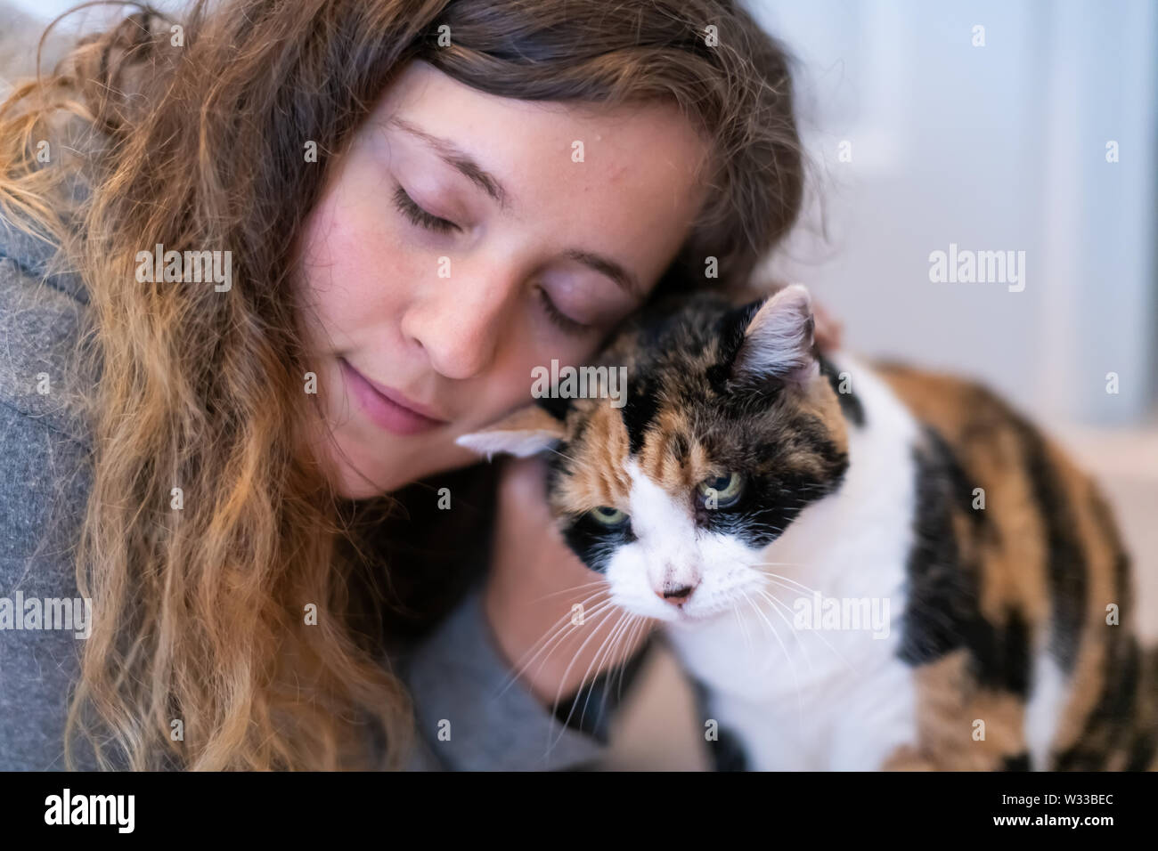 Closeup portrait of happy smiling young woman bonding with calico cat pet, bumping rubbing bunting heads, showing affection - Stock Image