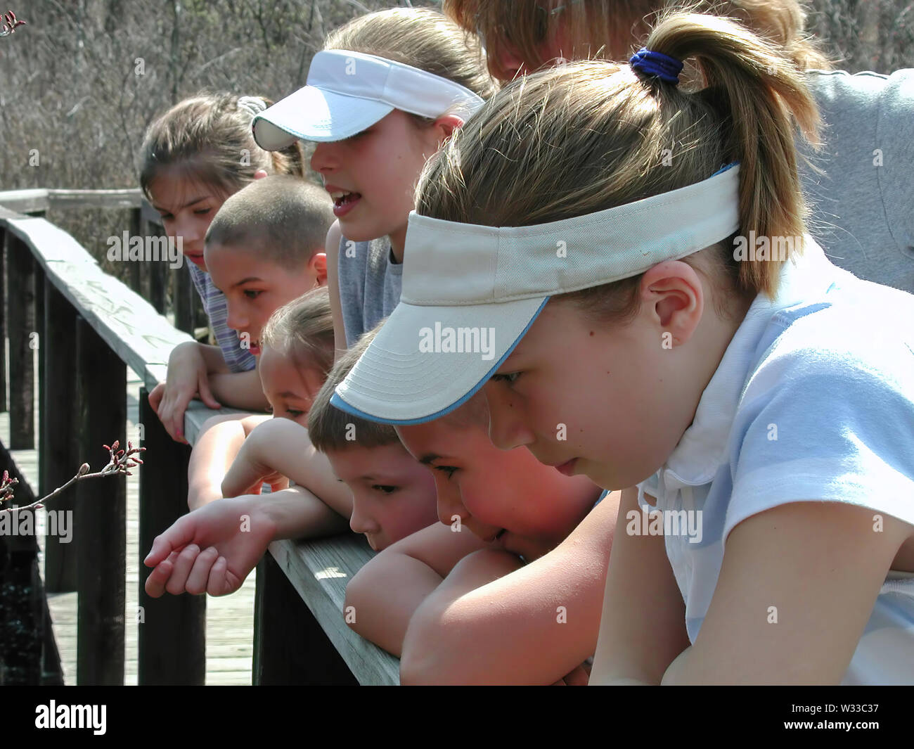 Rocky Hill, CT USA. Apr 2016. A focused group of kids looking at wildlife in action at the park. - Stock Image