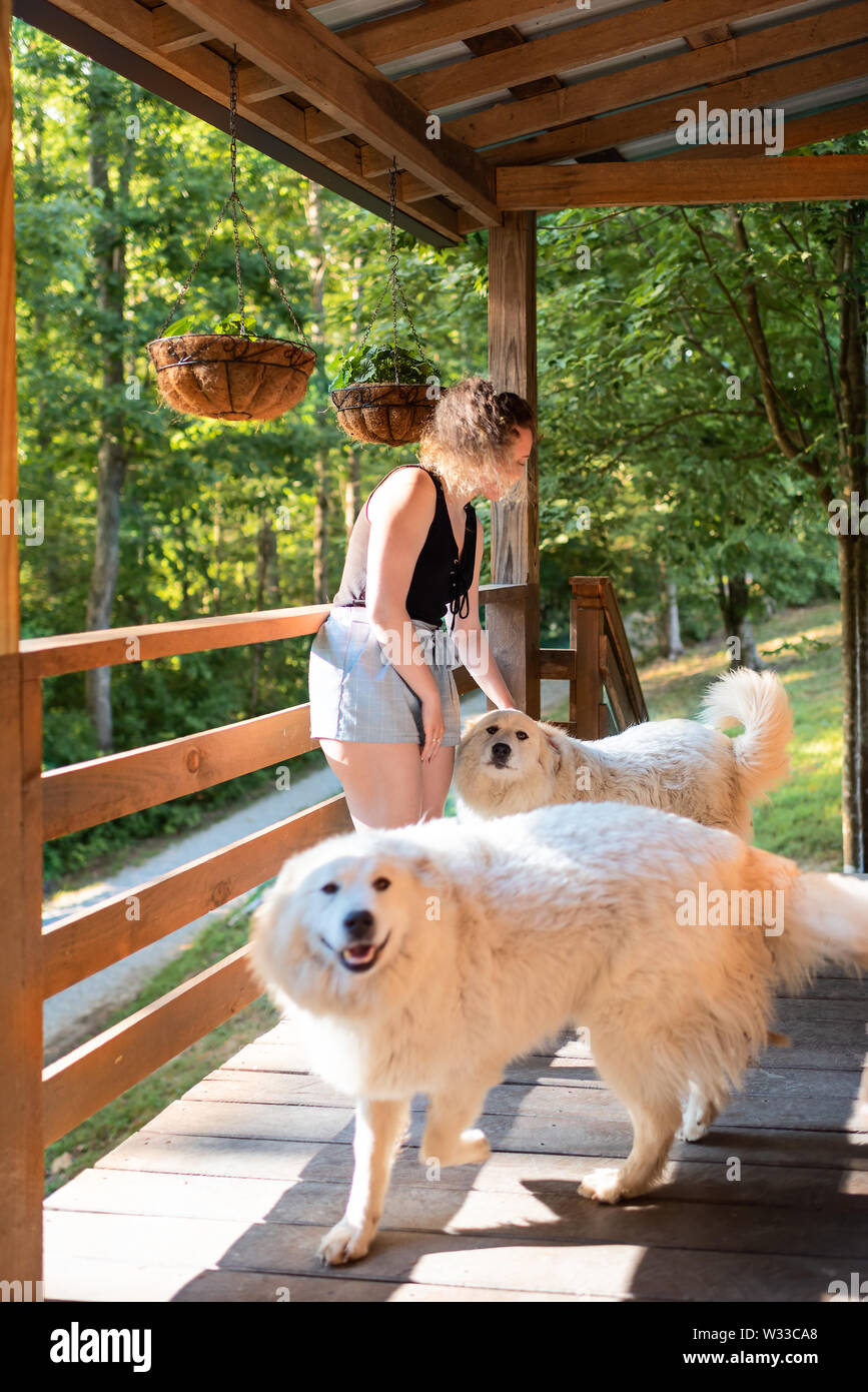 Young woman petting two white great pyrenees dogs outside at home porch of log cabin - Stock Image