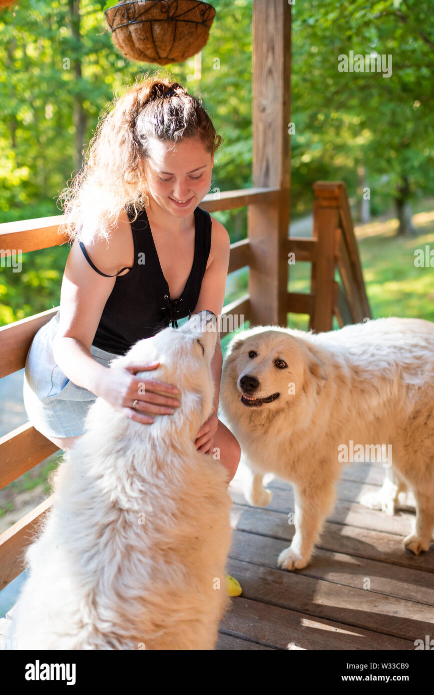Young happy woman petting two white great pyrenees dogs outside at home porch of log cabin - Stock Image