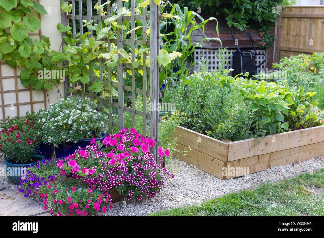 Vegetables And Flowers Growing In A Small Garden Stock Photo