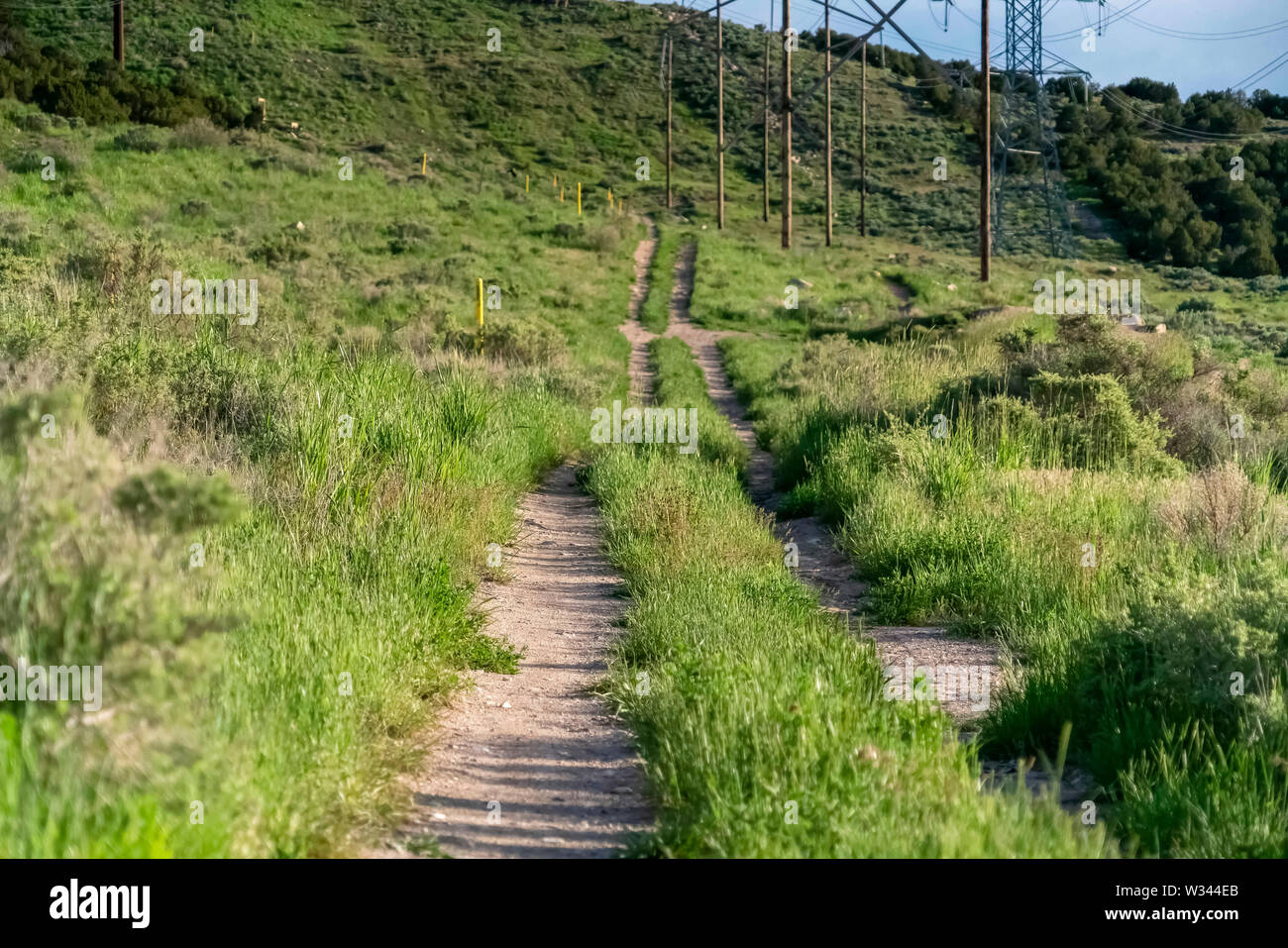 Close up of narrow trails of a grassy mountain terrain on a sunny day. Electrical towers and cables against a slope and blue sky can be seen in the ba - Stock Image