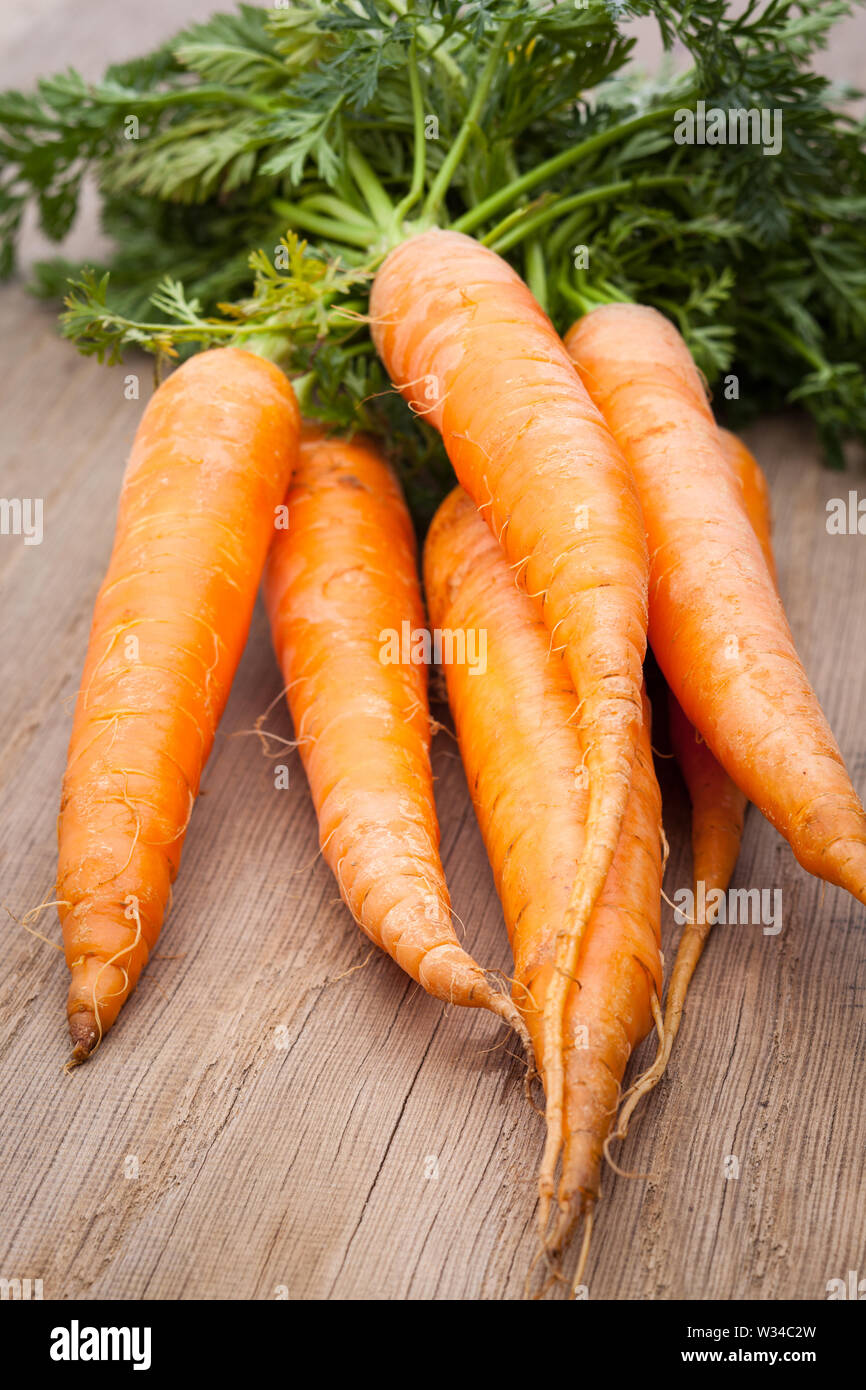 Extract of carrots on white background - Stock Image