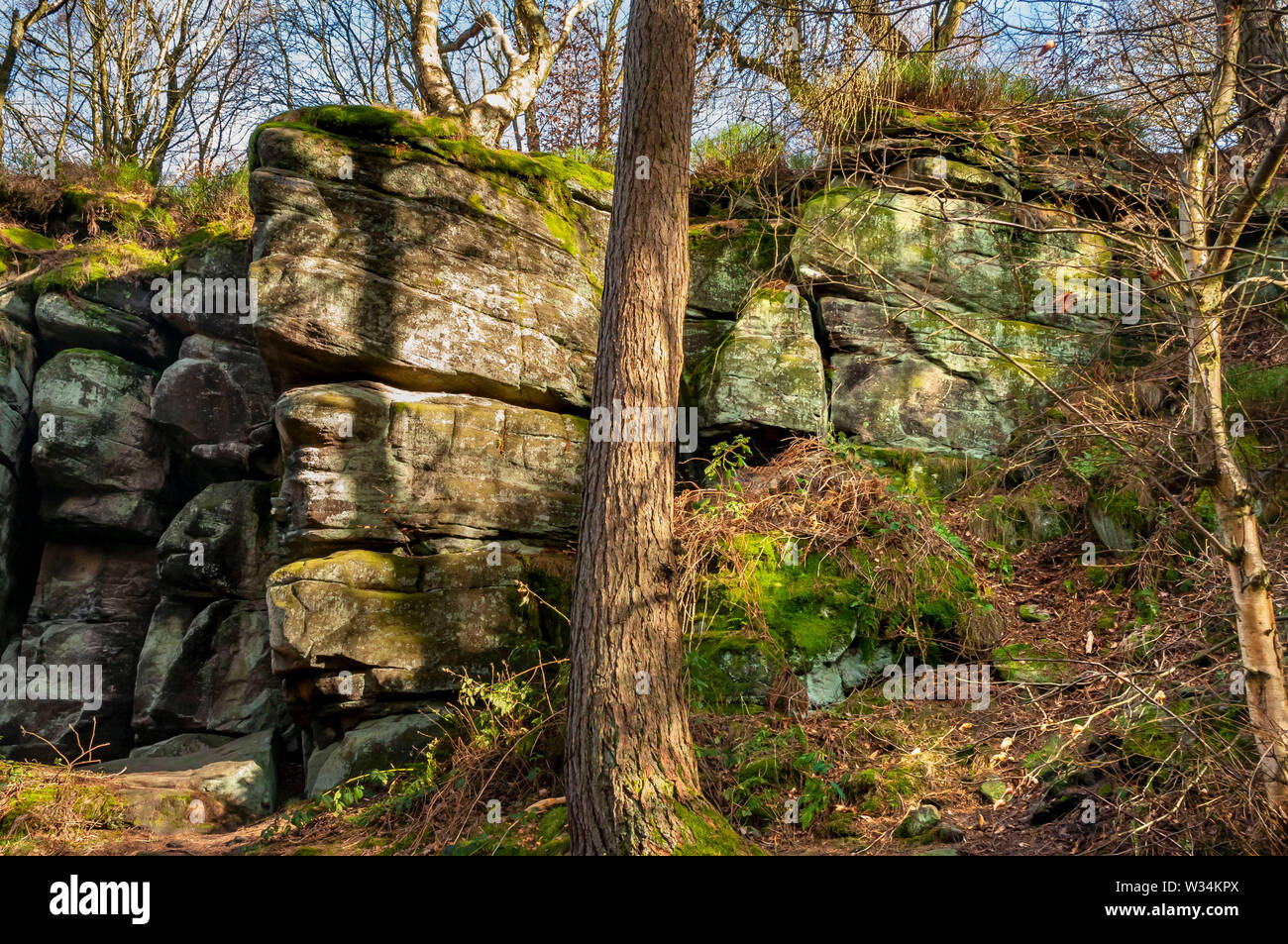 Sun-dappled view of a gritstone outcrop and trees high on the east side of Wyming Brook Gorge on the outskirts of Sheffield, South Yorkshire. Stock Photo