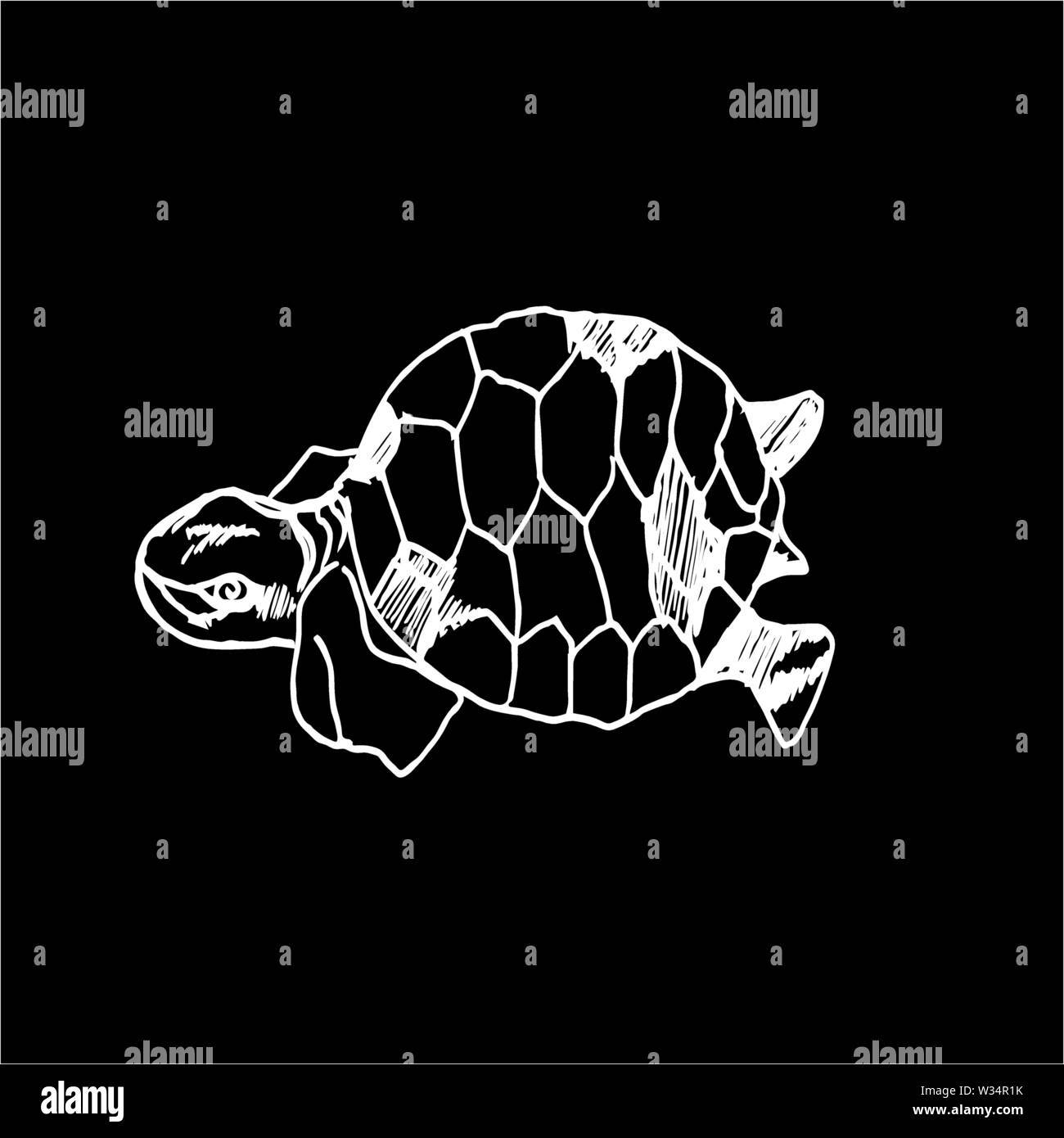 Black and white illustration of a psychedelic turtle. - Stock Image