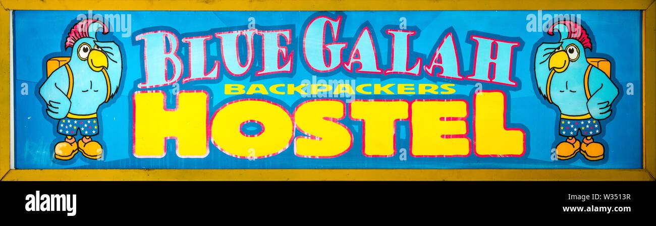 Sign for the Blue Galah Backpackers Hostel on King William Street, Adelaide, South Australia, Australia - Stock Image