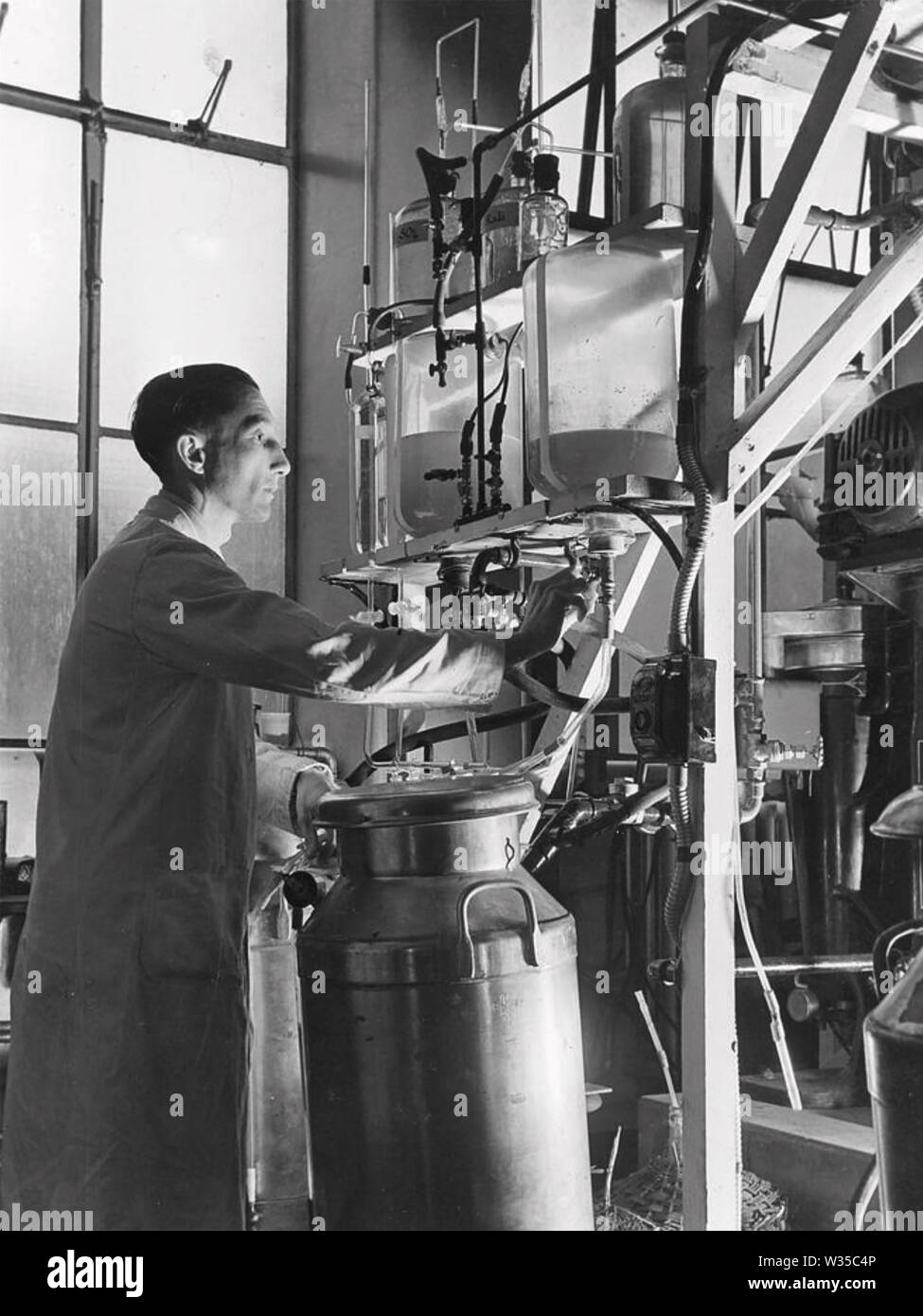 ARTHUR GORDON SANDERS (1908-1980) operating the penicillin extraction plant pioneered by Howard Florey, Ernest Chain and Alexander Fleming Stock Photo