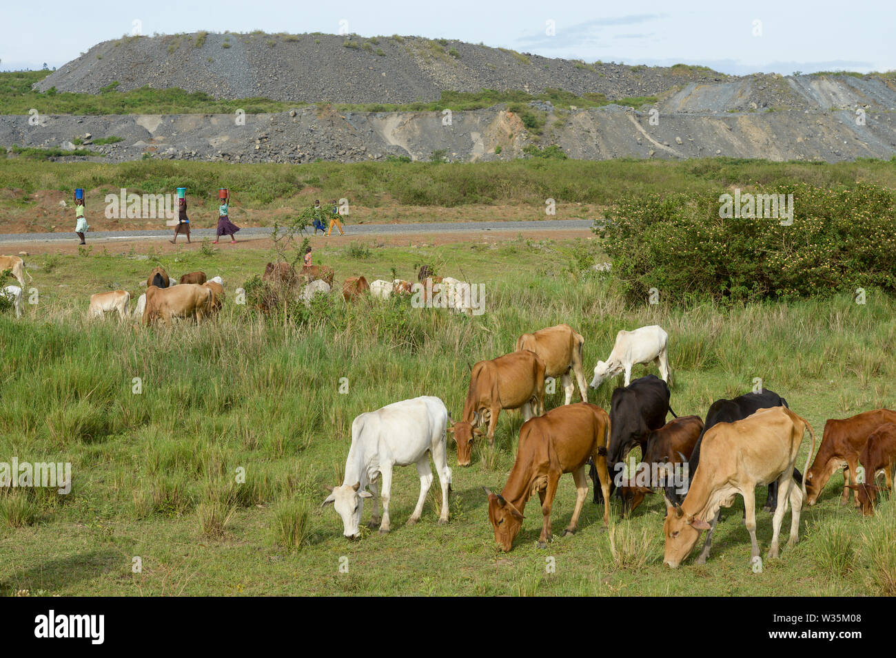 TANZANIA, Tarime Distrikt, Nyamongo, canadian Barrick Gold's subsidiary Acacia Mara Gold Mine, view to overburden disposals / TANSANIA, Blick auf Abraumhalden der Acacia Gold Mine im Afrikanischen Grabenbruch - Stock Image