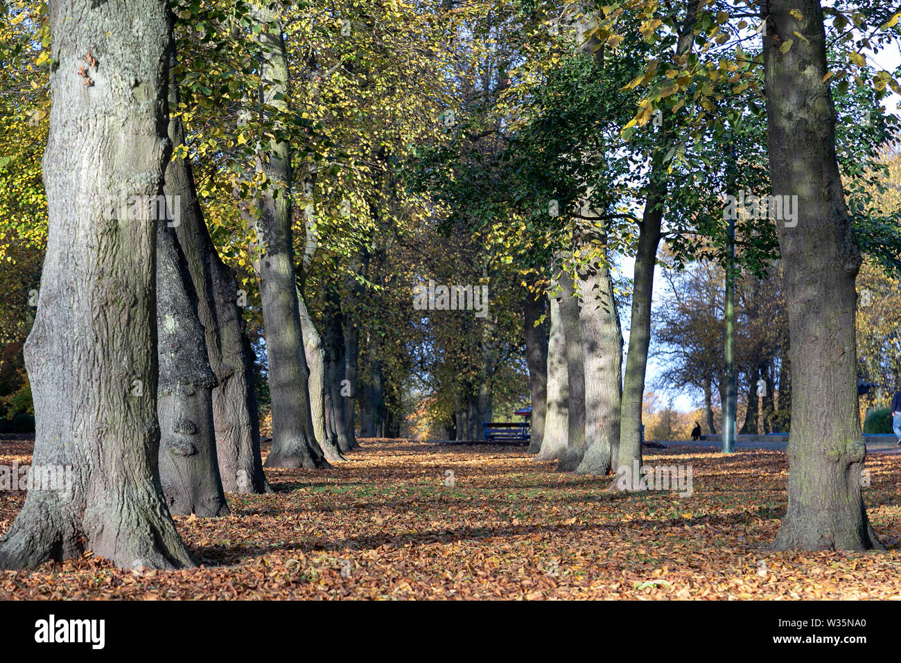 Ropner Park, Stockton on Tees. UK Stock Photo
