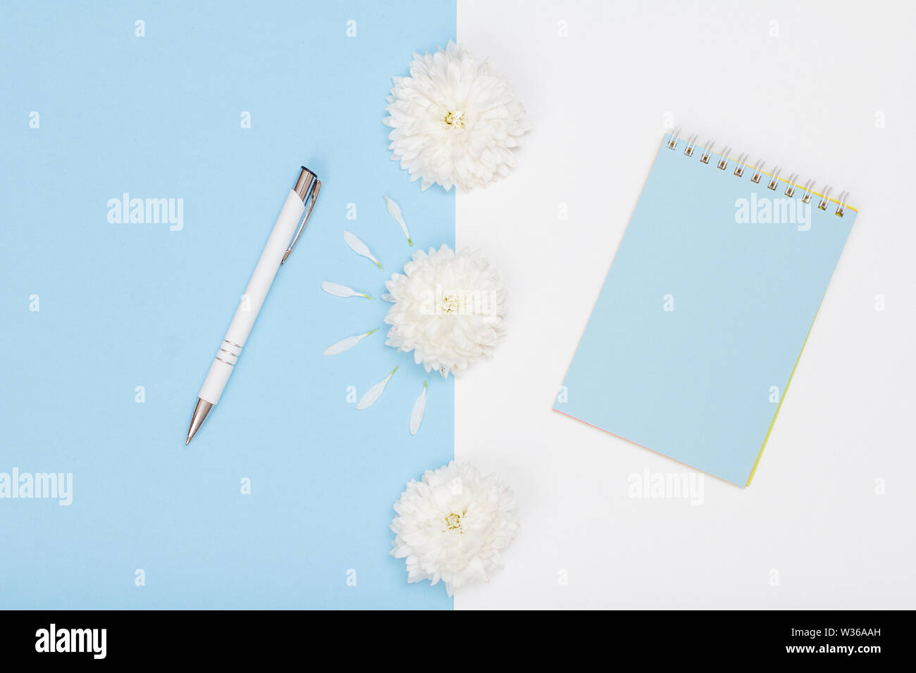 School supplies. Notebook and pen on white and blue background with flowers. Top view. Back to school concept. - Stock Image