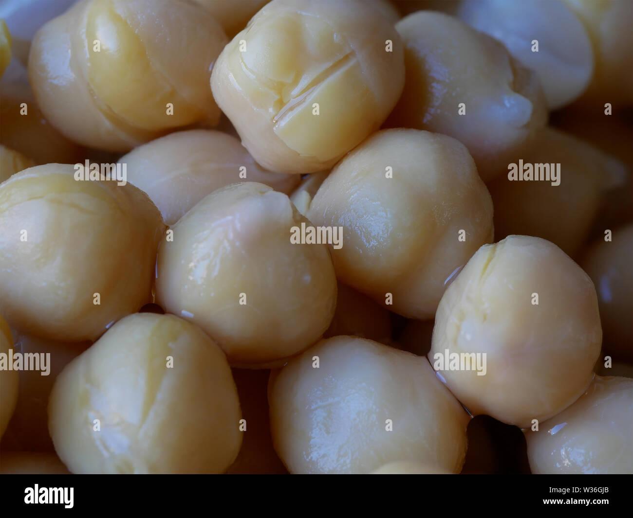 Macro Close-up of Wet Yellow Chickpeas, Cicer arietinum, Food Background Stock Photo