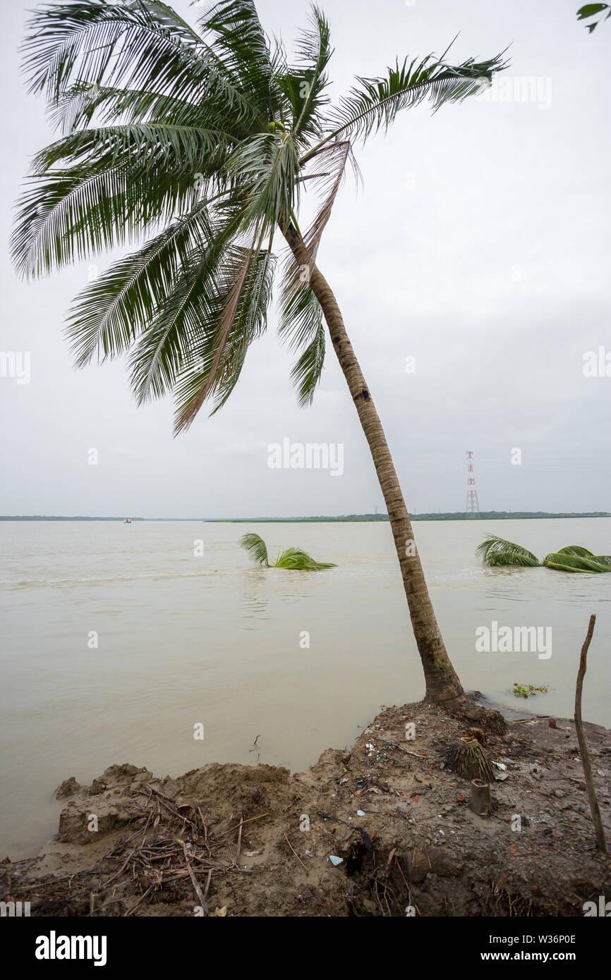 Bangladesh – June 27, 2015: Massive effect of river erosion at Rasulpur, Barisal District. - Stock Image