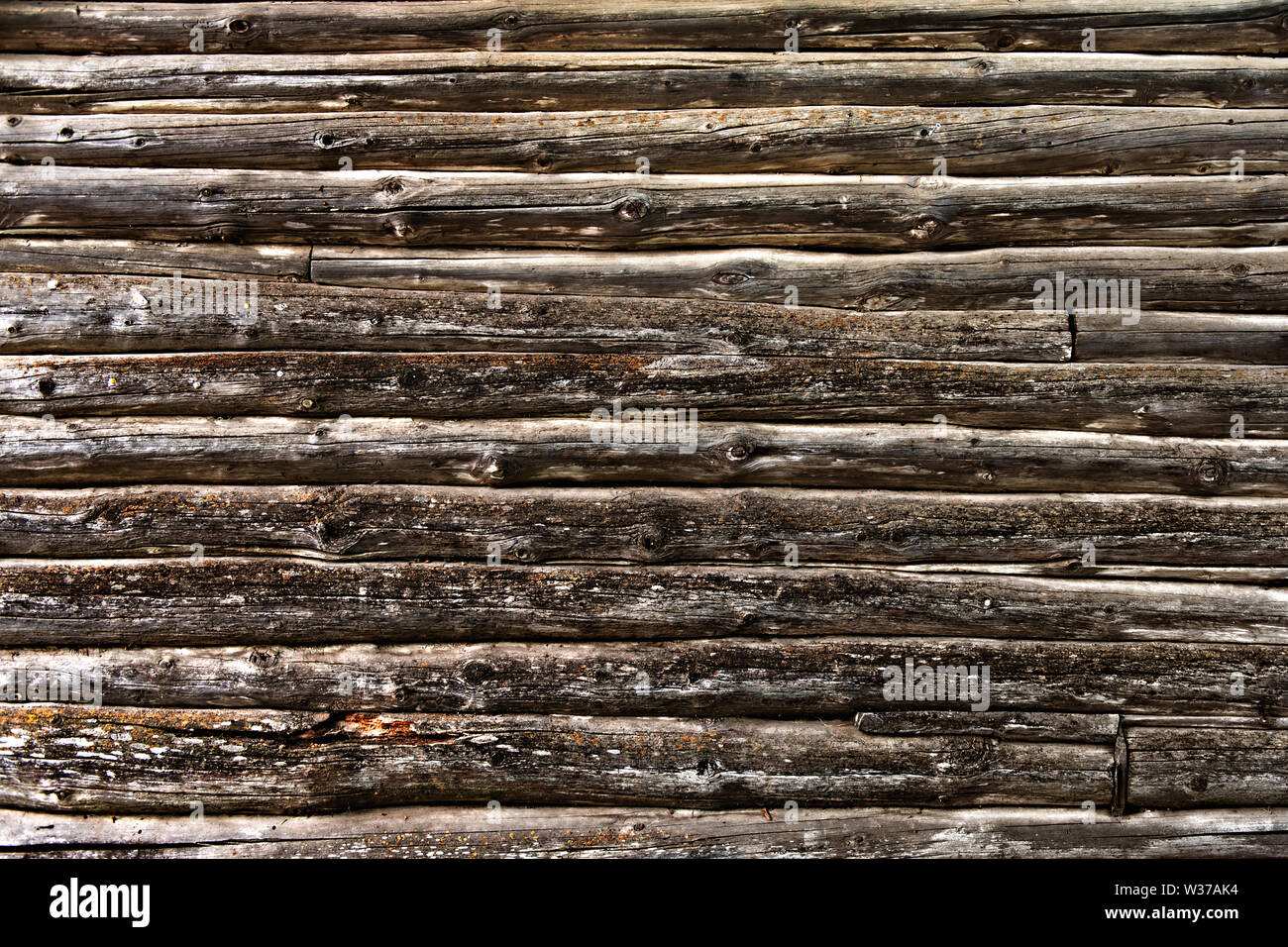 wall of old logs as a grunge background - Stock Image