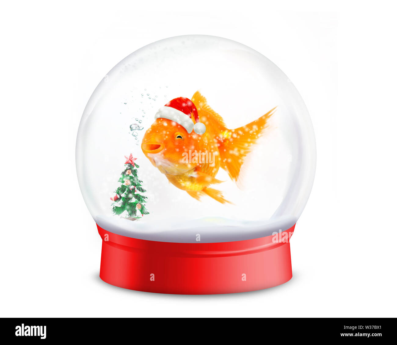 Smiley goldfish wearing a santa hat  with christmas tree  in red snowball on white background - Stock Image