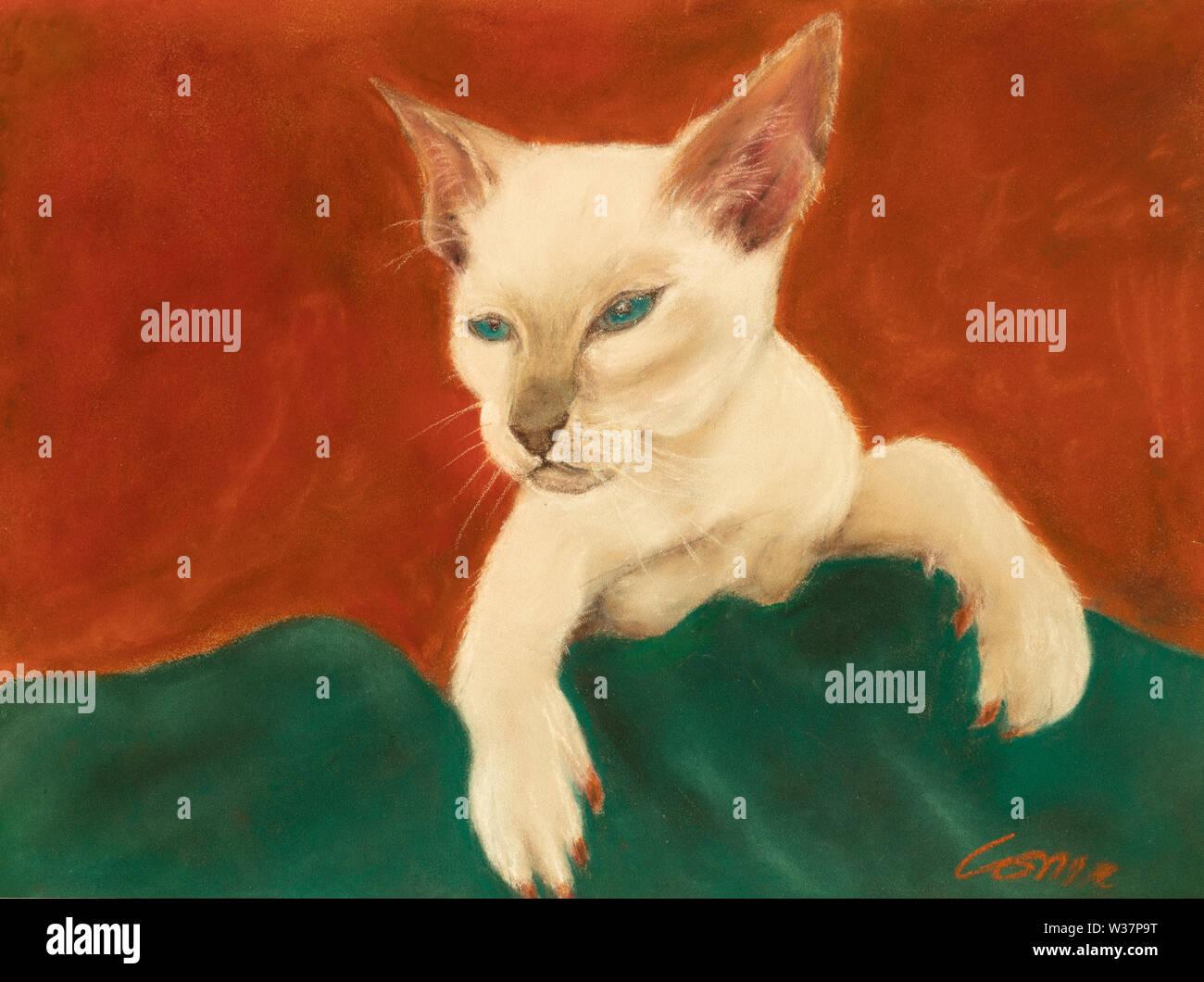 cat portrait in pastels - Stock Image