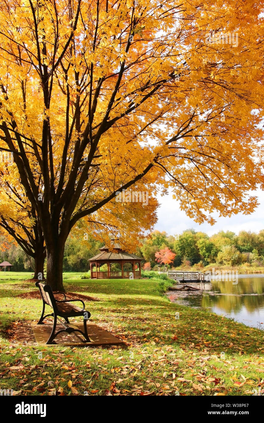 Beautiful autumn landscape with colorful trees around the pond and wooden gazebo in a city park. Lakeview park, Middleton, Madison area, WI, USA. Stock Photo