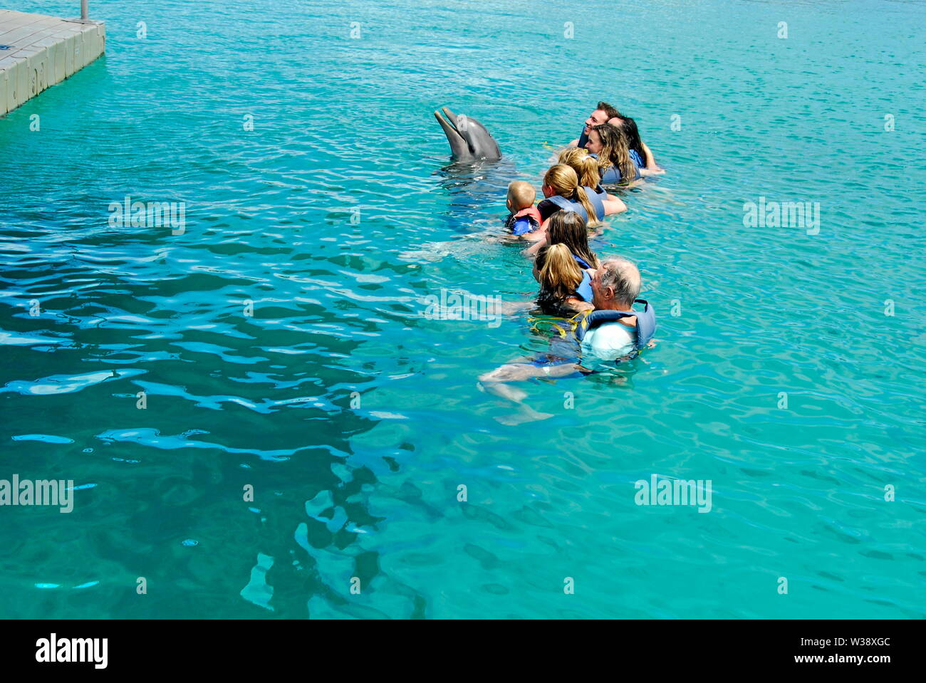 Swimming With The Dolphins At Blue Lagoon Island Near Nassau