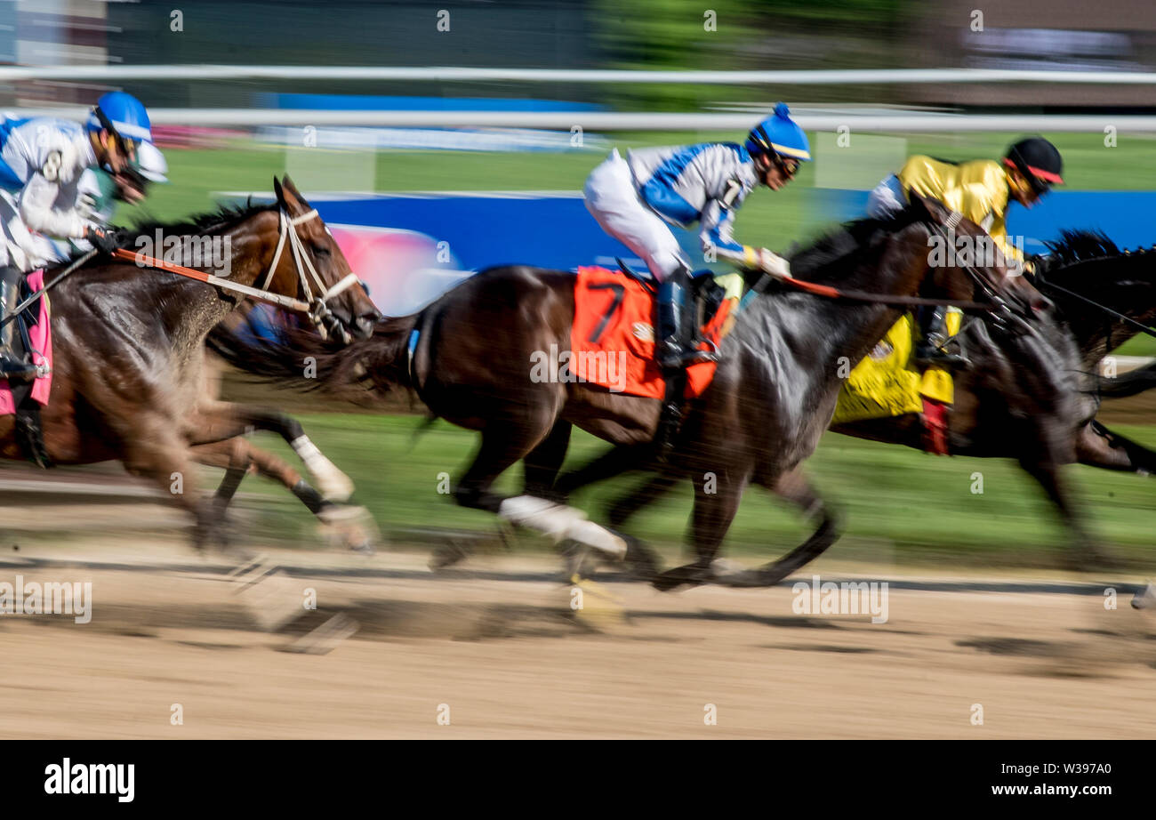 Stanton, DE, USA. 13th July, 2019. July 13, 2019 : Elate #7, ridden by Jose Ortiz, wins the Delaware Handicap for the second year in a row on Delaware Handicap Day at Delaware Park in Stanton, Delaware. Scott Serio/Eclipse Sportswire/CSM/Alamy Live News - Stock Image