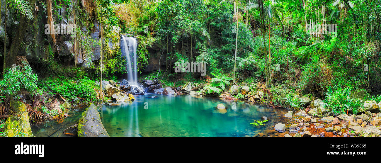 Clean fresh water pool between rocks formed by waterfall cutting through mountains in Tamborine mt national park and lush rainforest, Quensland, Austr Stock Photo