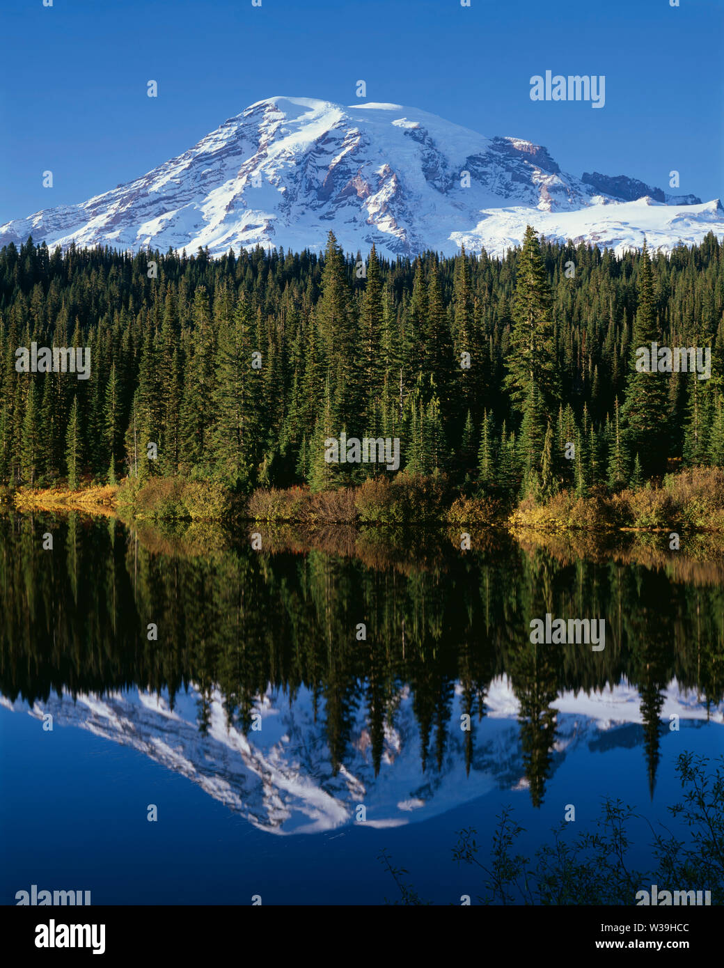 USA, Washington, Mt. Rainier National Park, Mt. Rainier with fresh autumn snow and fall-colored willows and huckleberries reflects in Reflection Lake. Stock Photo