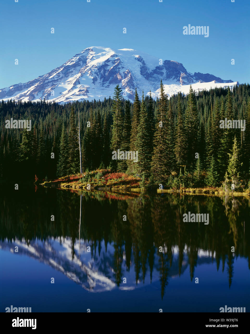 USA, Washington, Mt. Rainier National Park, Mt. Rainier with fresh autumn snow and fall-colored shrubs reflect in Reflection Lake. Stock Photo