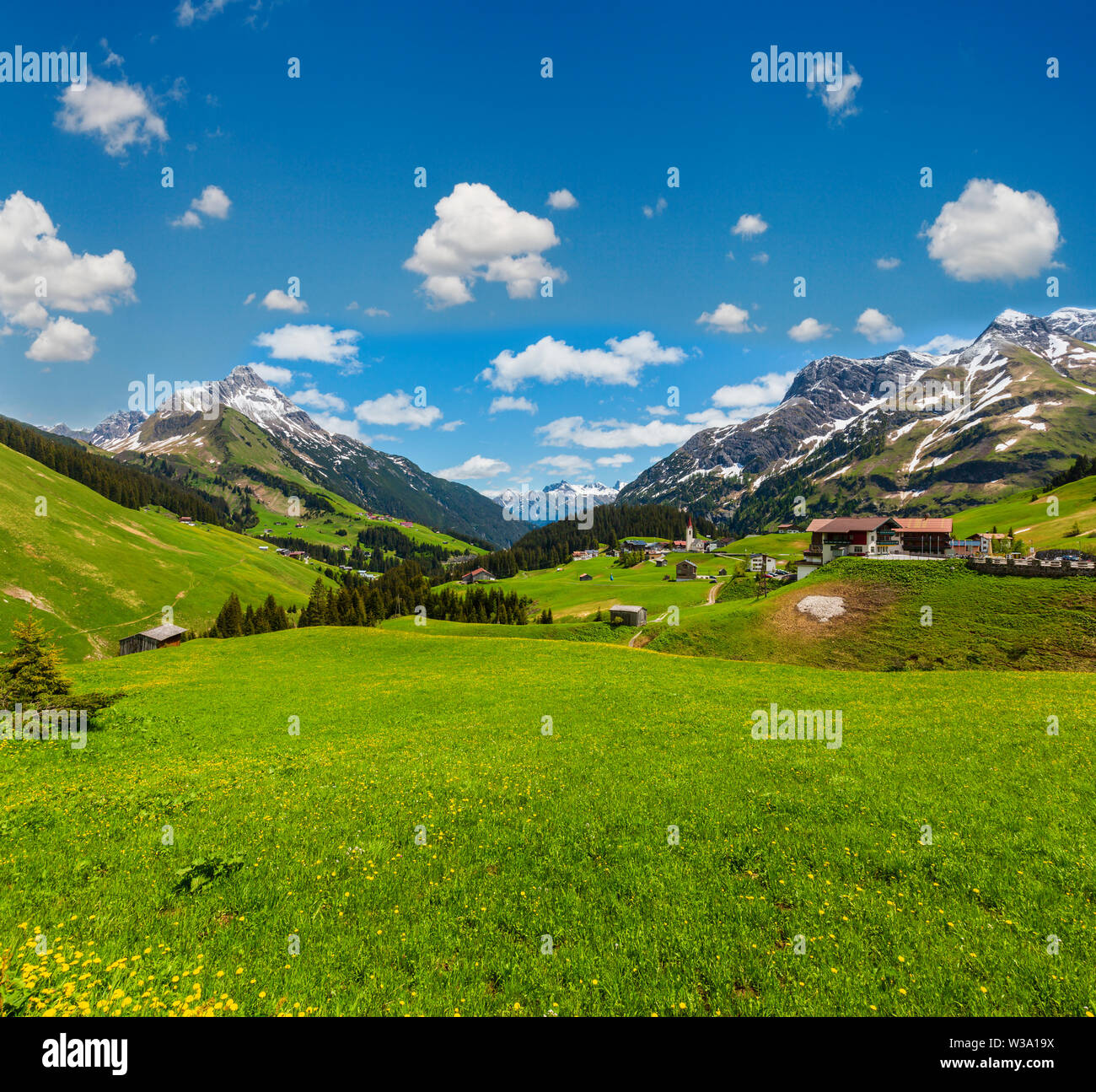 Summer Alps mountain view to Biberkopf mount, Warth, Vorarlberg, Austria - Stock Image