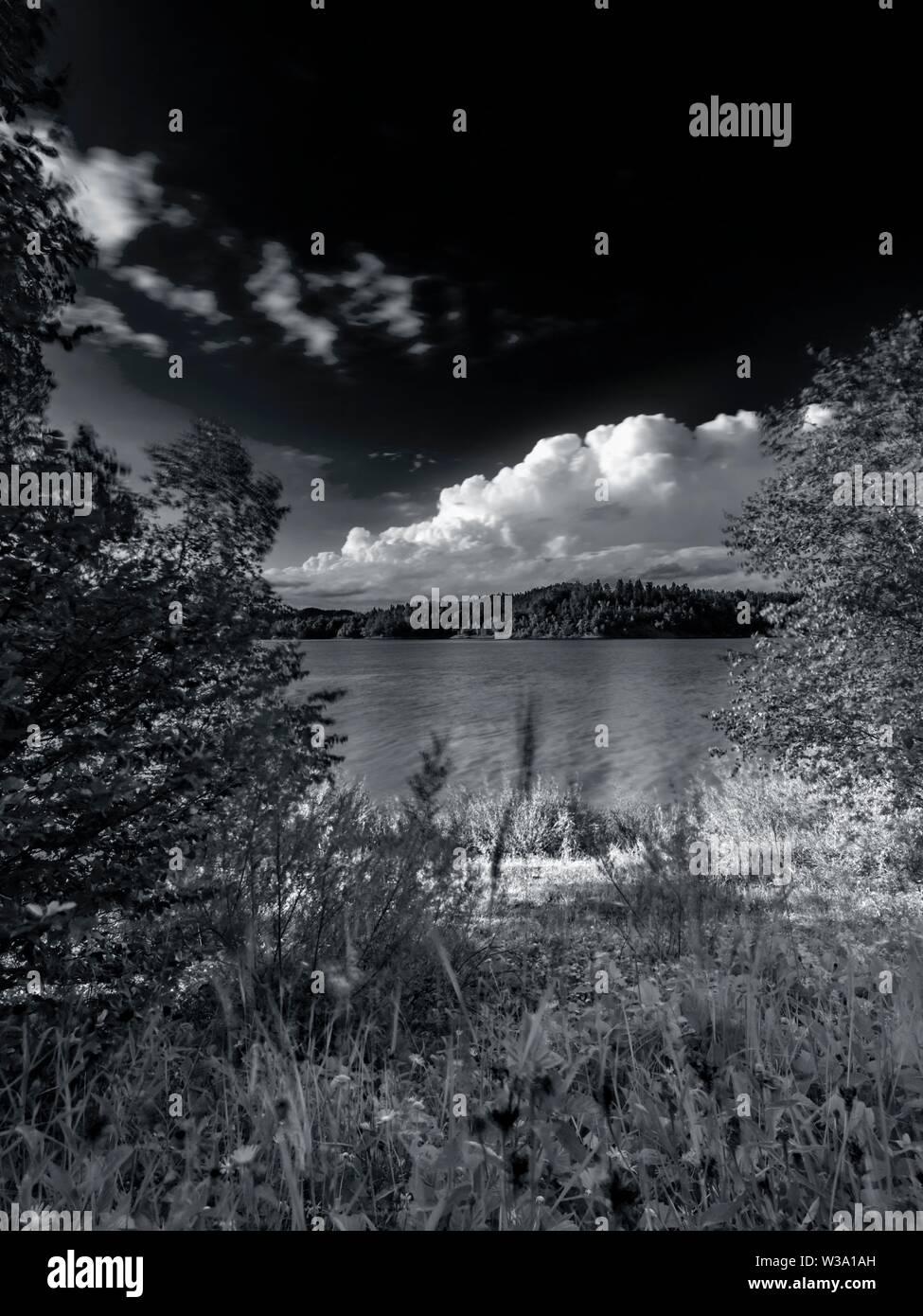 Nature Lokvarsko jezero lake Lokve in Croatia - Stock Image