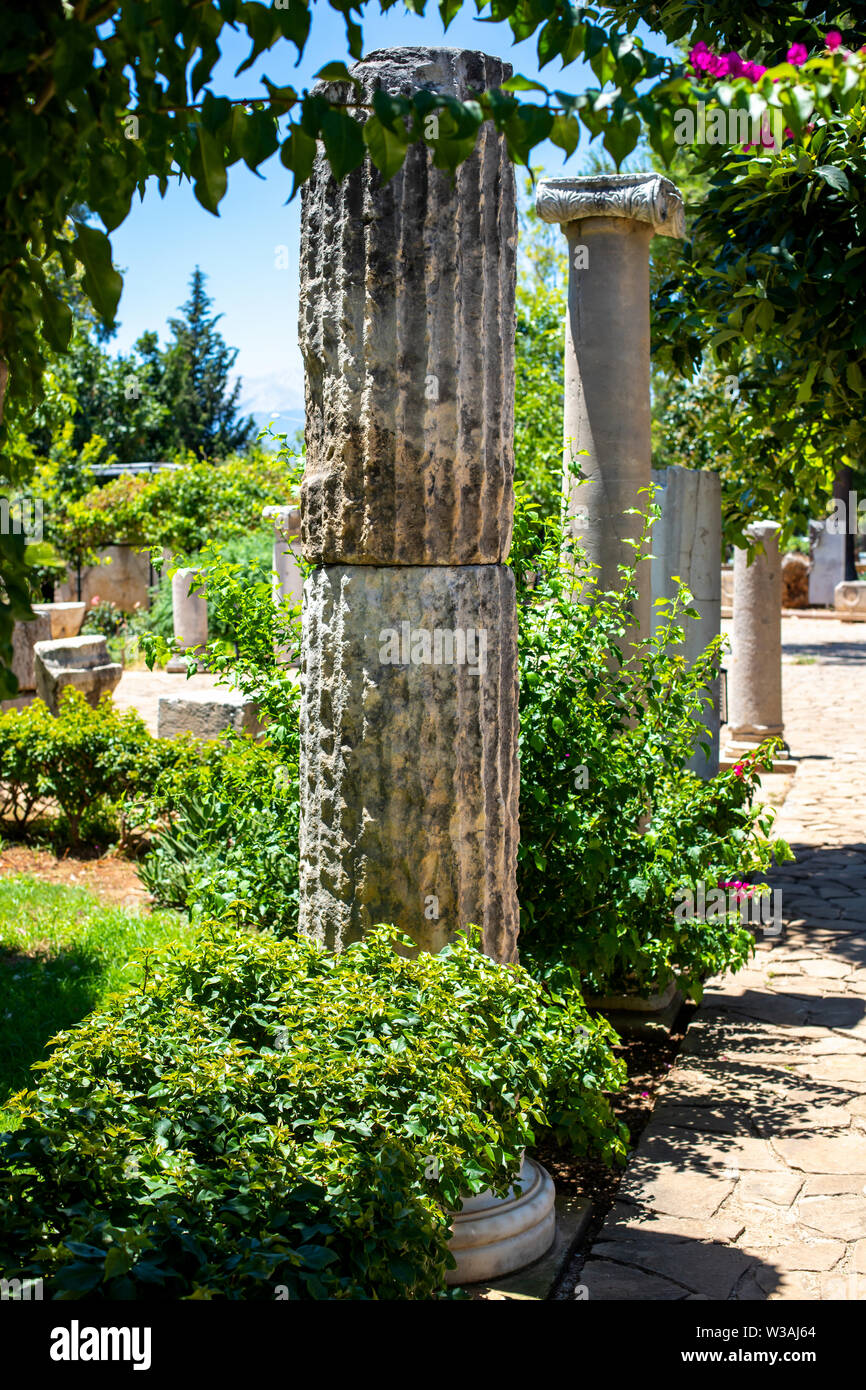 Classic Roman columns. A picturesque alley with antique decorations. The architecture of ancient Rome. Green flowering garden with ancient columns. - Stock Image