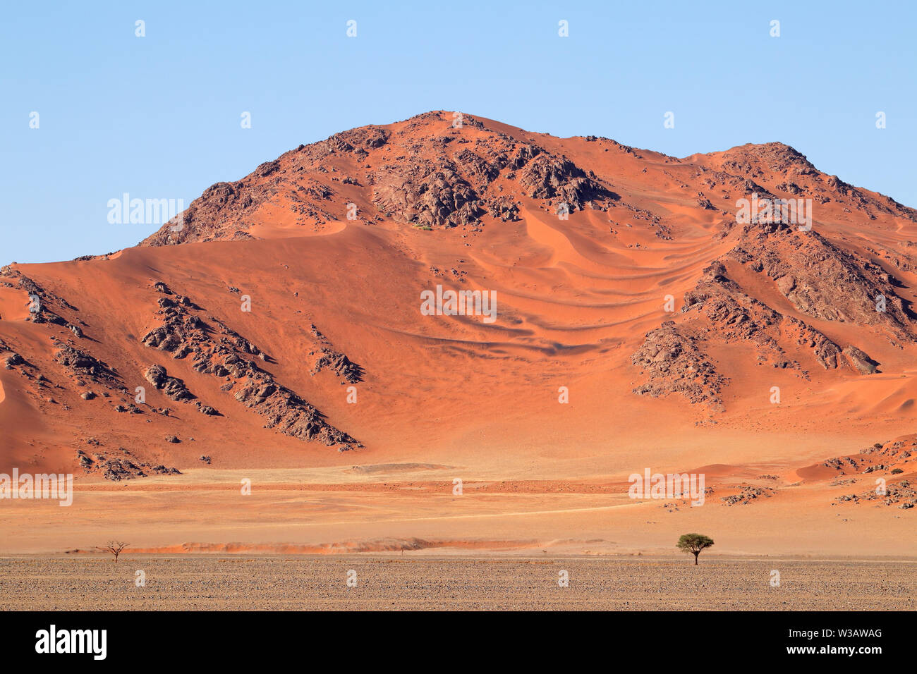 Rugged dune landscape, Sossusvlei, Namib desert, Namibia Stock Photo
