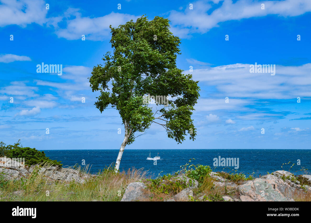 02 July 2019, Denmark, Gudhjem: The north coast of the Danish Baltic Sea island Bornholm near the port of Gudhjem. The island Bornholm is, together with the offshore archipelago Ertholmene, Denmark's most eastern island. Thanks to its location, the island of Bornholm counts many hours of sunshine. Photo: Patrick Pleul/dpa-Zentralbild/ZB Stock Photo
