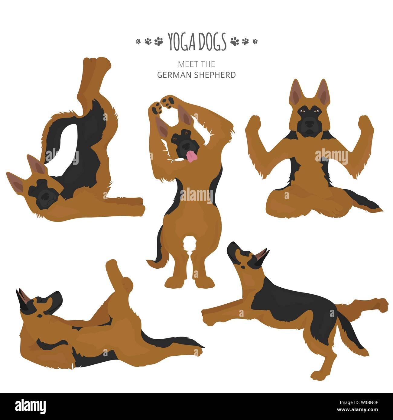 Yoga dogs poses and exercises. German shepherd clipart. Vector illustration - Stock Vector