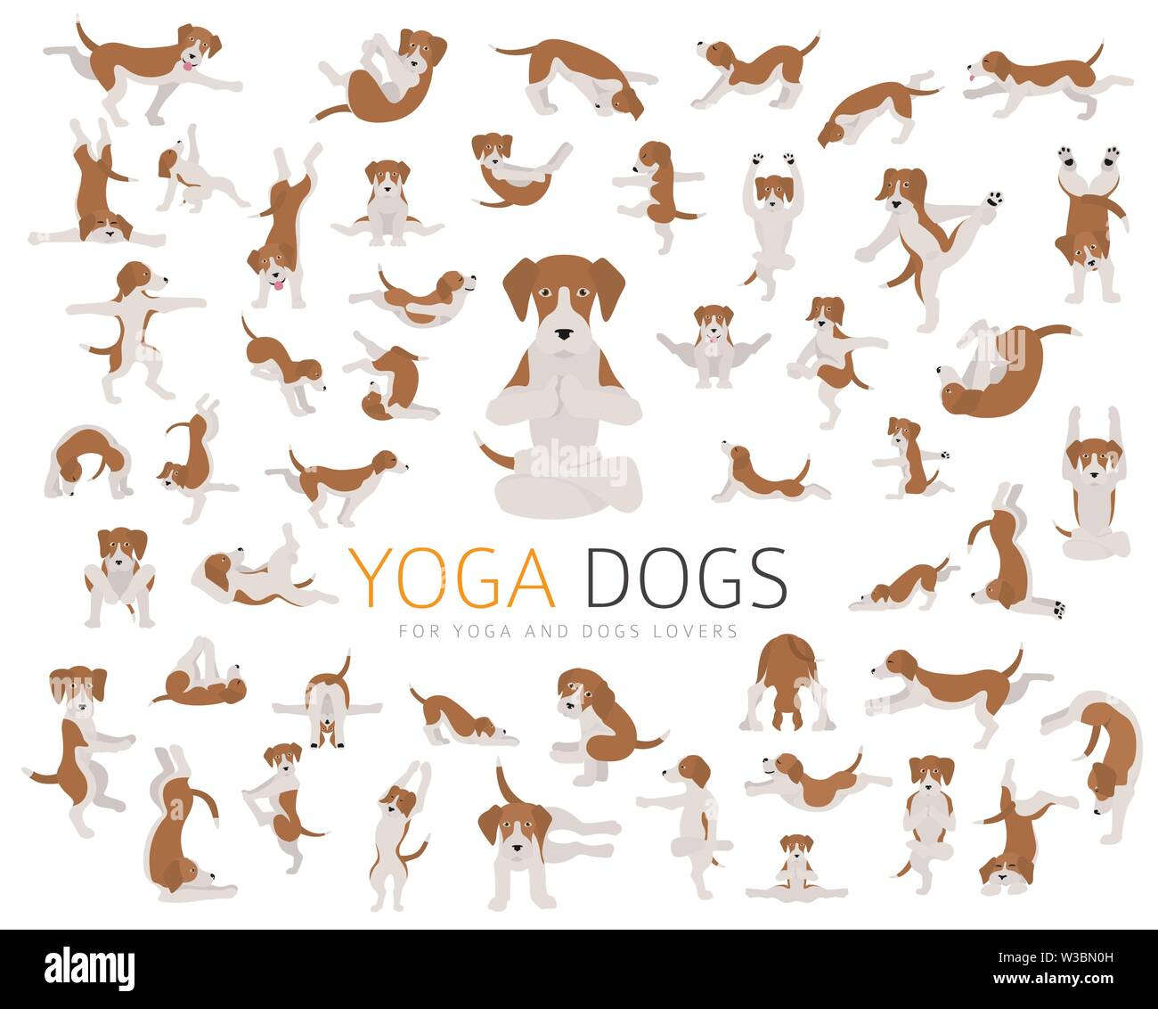 Yoga Dogs Poses And Exercises Doing Clipart Funny Cartoon Poster Design Vector Illustration Stock Vector Image Art Alamy