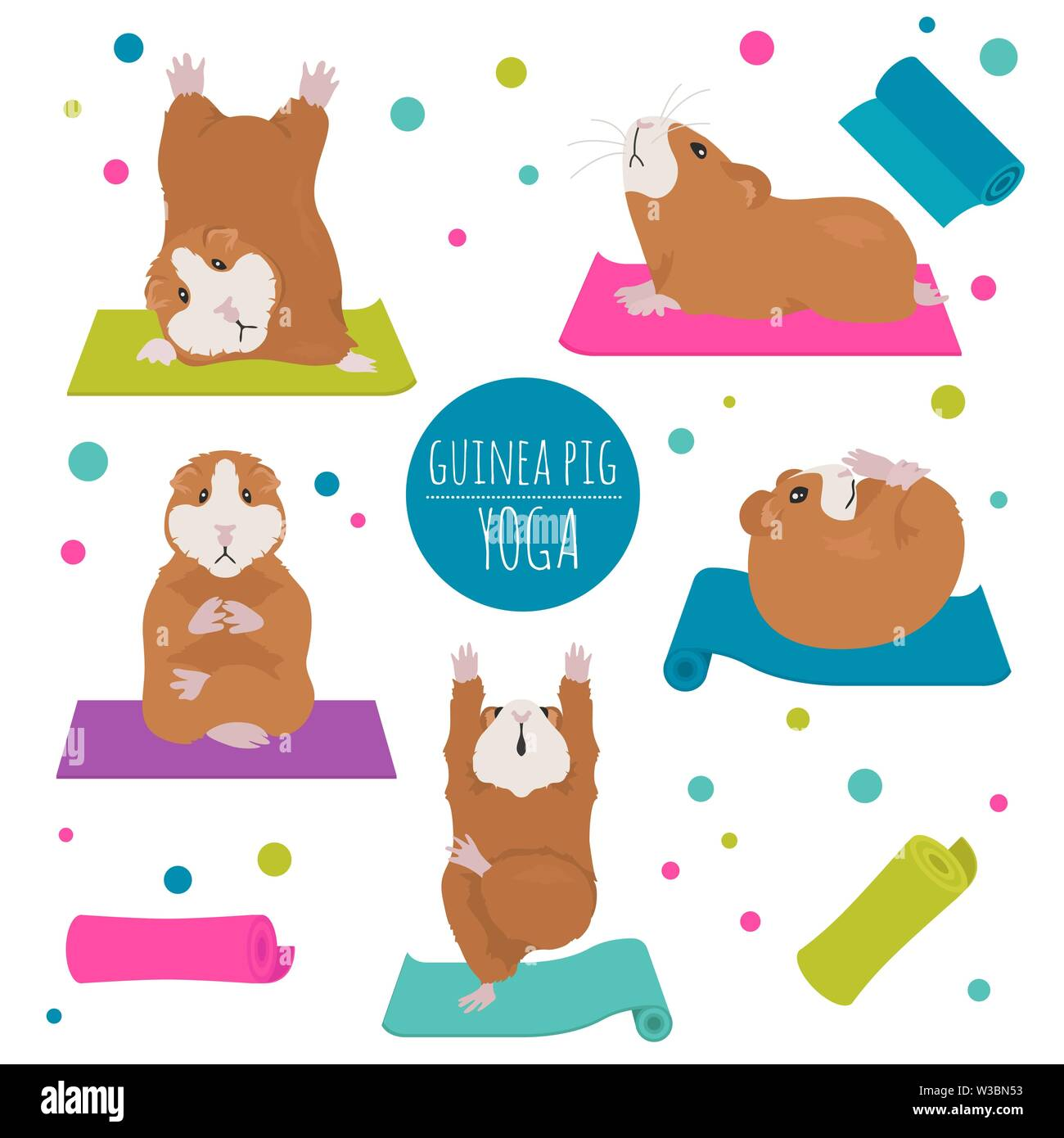 Guinea Pig Yoga Poses And Exercises Cute Cartoon Clipart Set Vector Illustration Stock Vector Image Art Alamy