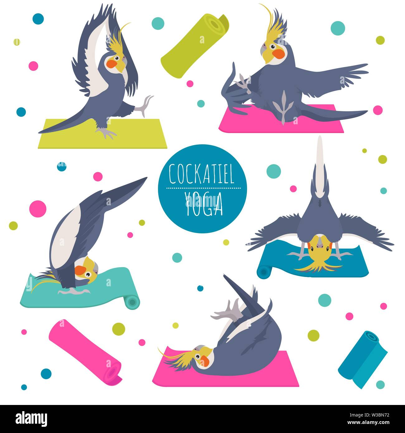 Cockatiel Yoga Poses And Exercises Cute Cartoon Clipart Set Vector Illustration Stock Vector Image Art Alamy