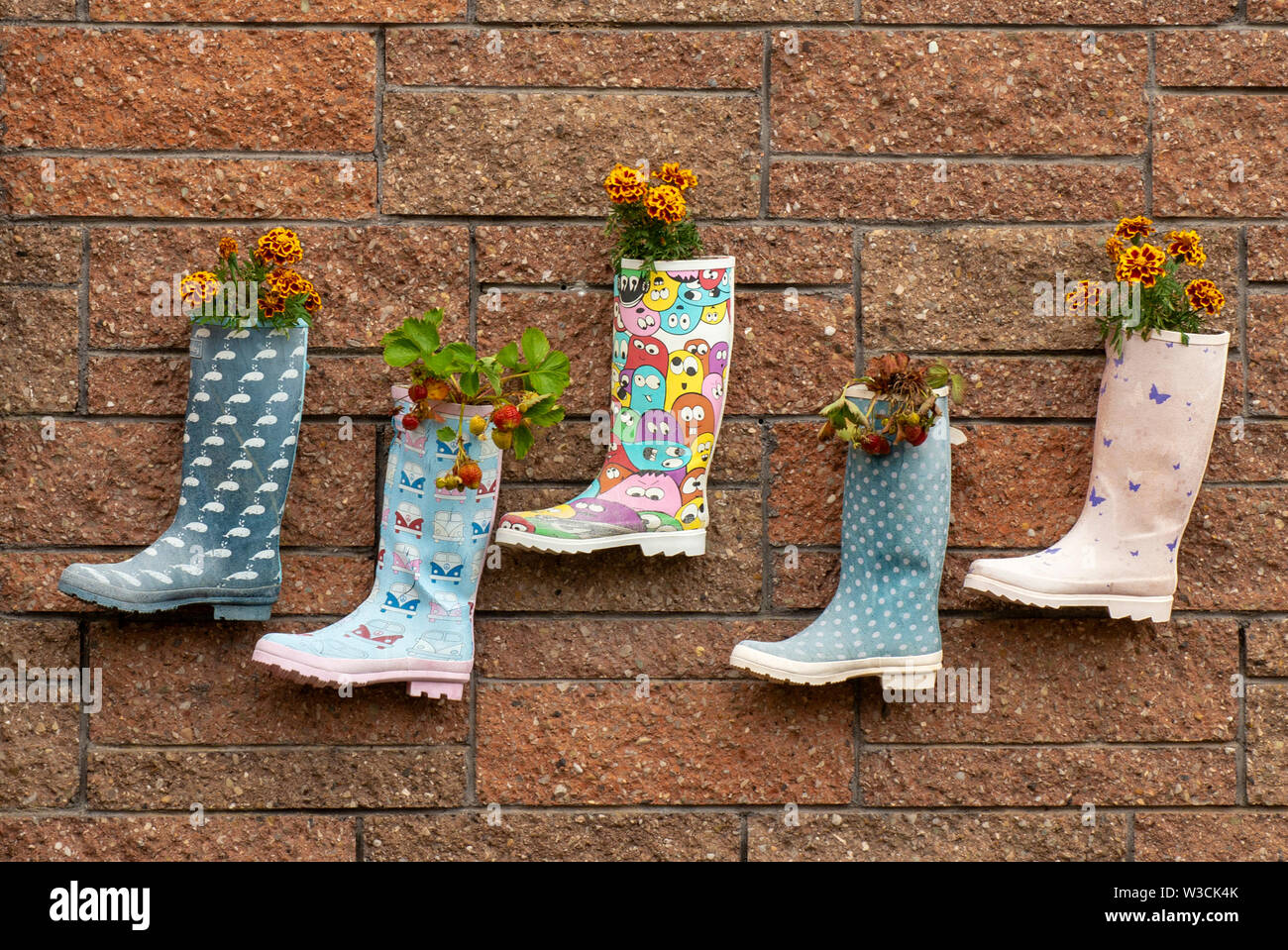 Funny children's kid's Wellington welly boots plant pots with planted strawberries and flowers hanging on brick wall in Irish kindergarten. Stock Photo