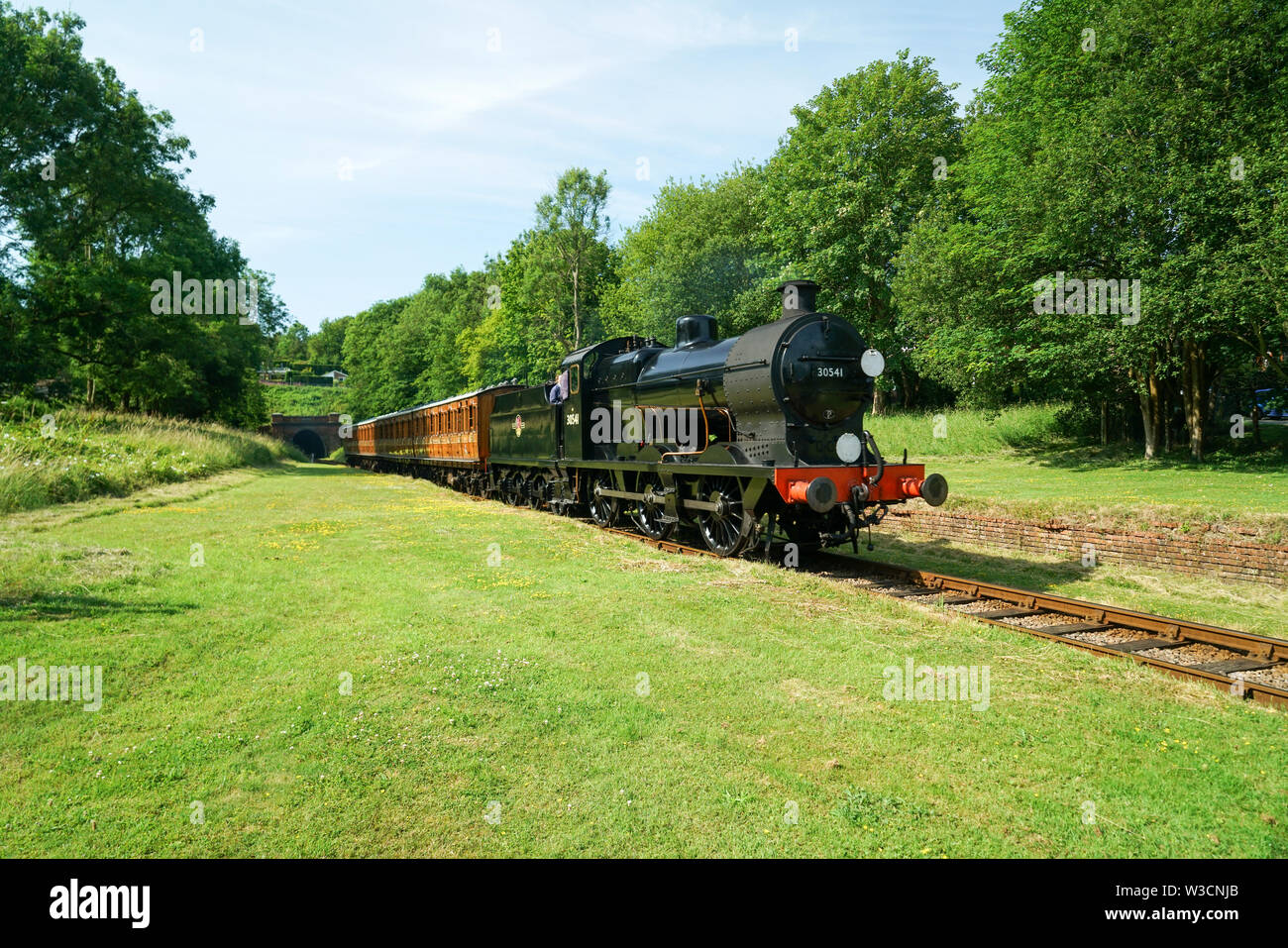 Bluebell Railway Q Class Locomotive & Vintage Carriages at Site of West Hothly Station - Stock Image