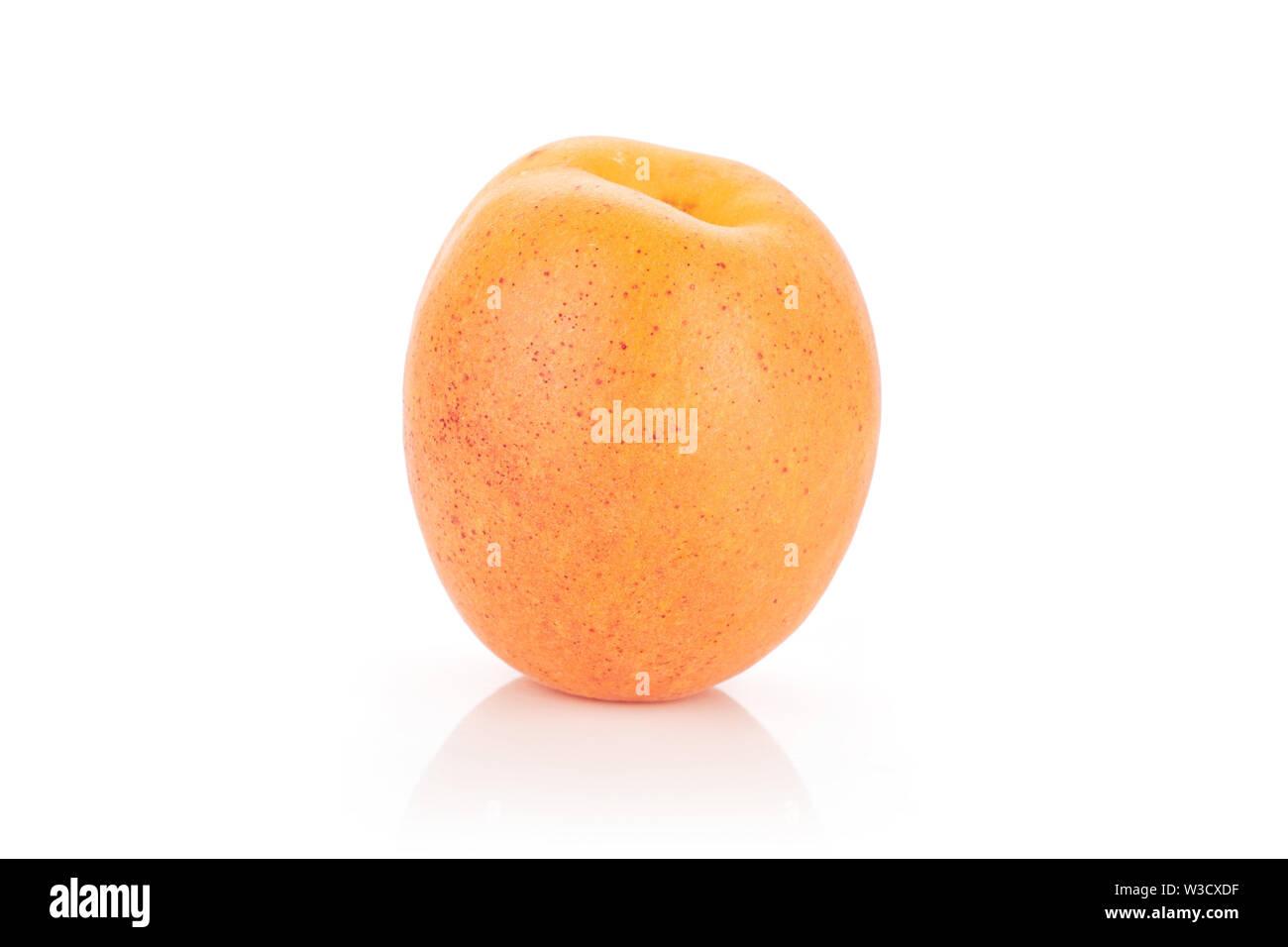 One whole velvety fresh deep orange apricot isolated on white background - Stock Image