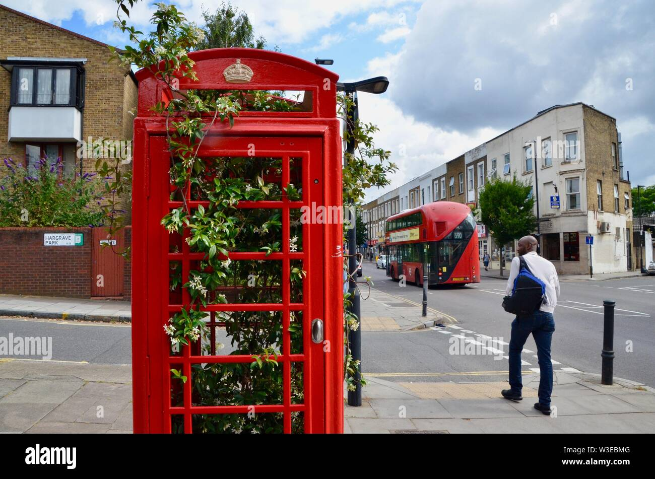 iconic red telephone box kiosk in london containing growing bush near archway Stock Photo