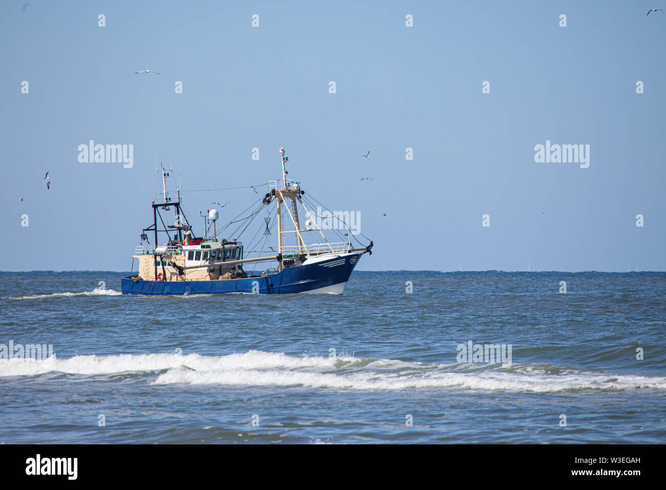a shrimp cutter on the north sea - Stock Image