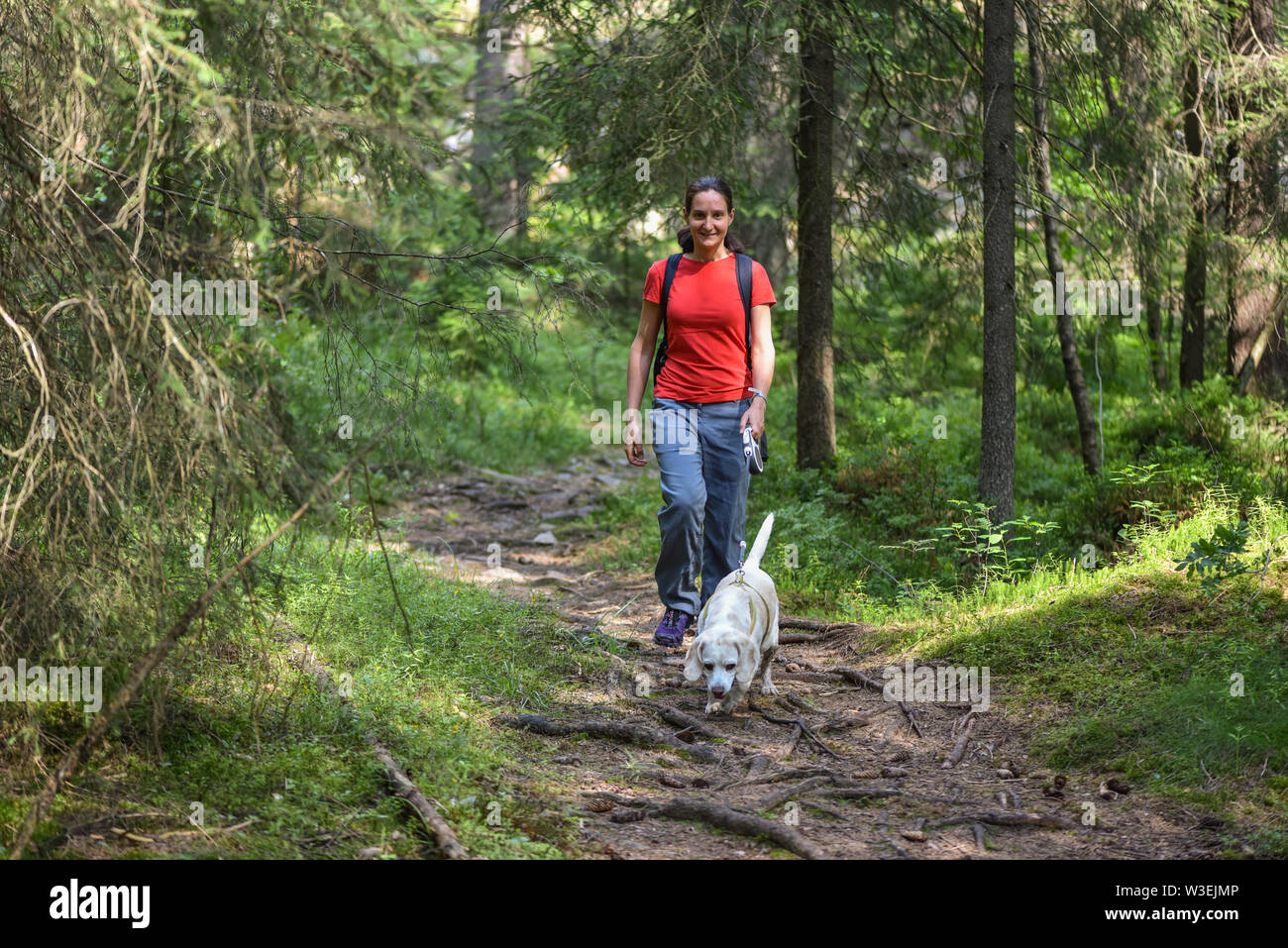 Woman walking with a white beagle Stock Photo