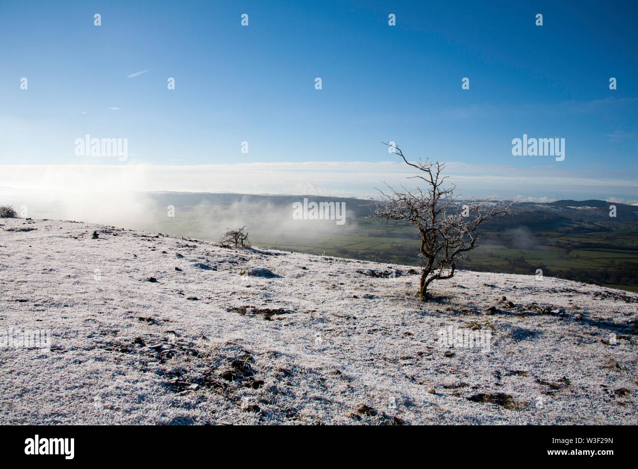 The frosty snow clad plateau of Scout Scar  on a  clear bright winter day  near Kendal Lake District Cumbria England - Stock Image