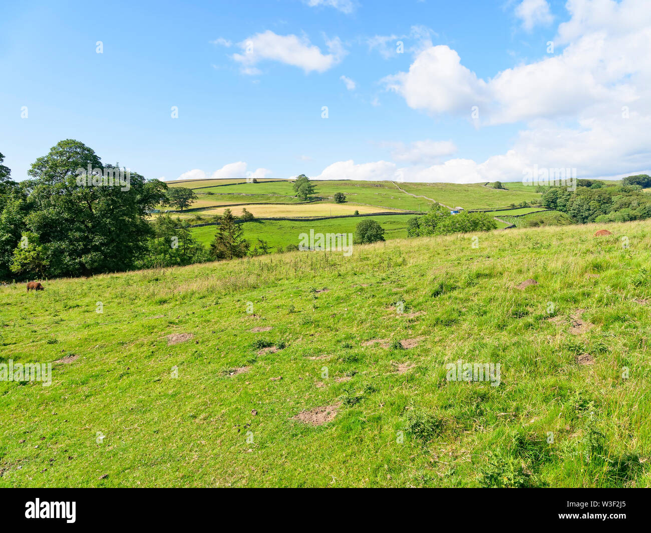 A summer day looking out over the countryside of the Yorkshire Dales. - Stock Image