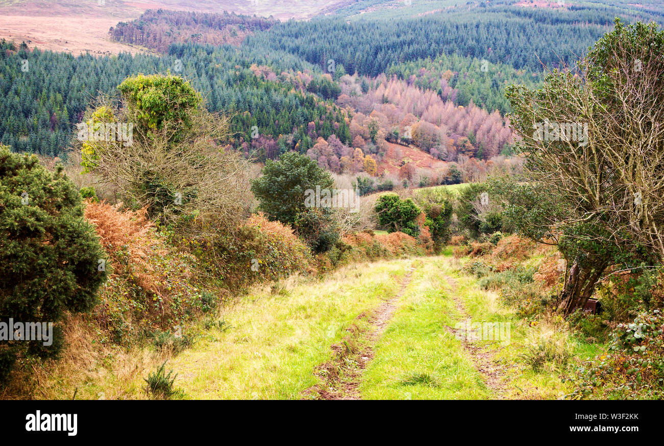 Autumn landscape of hills rising over Glenary River Valley in Comeragh Mountains. County Waterford, Ireland. - Stock Image