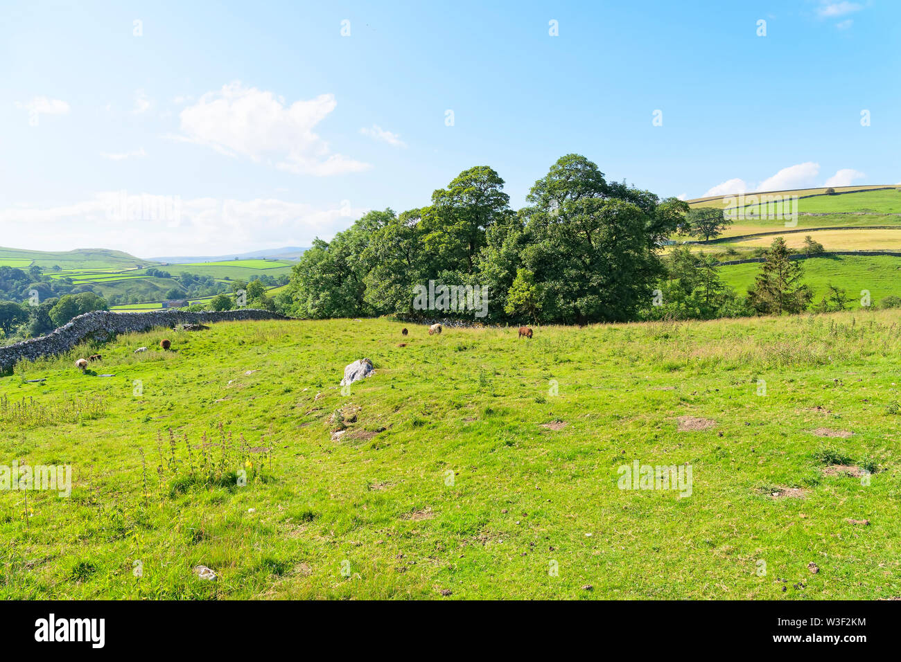 Out across the Yorkshire Dales on a bright, sunny, summers day. - Stock Image